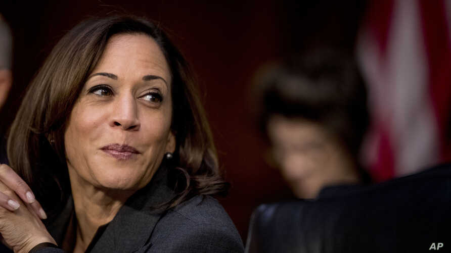 Democratic presidential candidate Sen. Kamala Harris, D-Calif., appears for a Senate Homeland Security Committee hearing on Capitol Hill in Washington, Nov. 5, 2019.