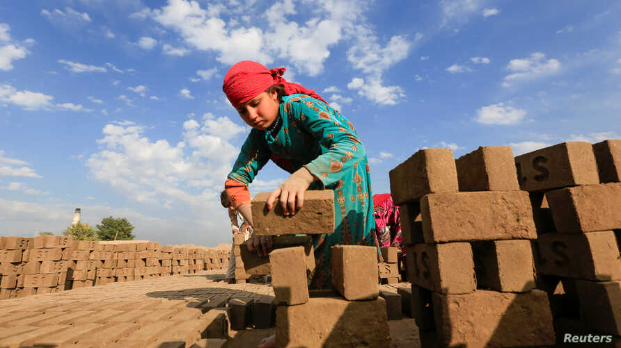 An Afghan girl works at a brick-making factory on the outskirts of Jalalabad city, eastern Afghanistan November 13, 2019…