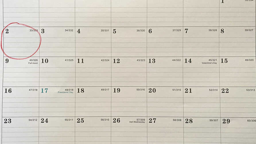 A calendar shows the Feb. 2, 2020, palindrone date.