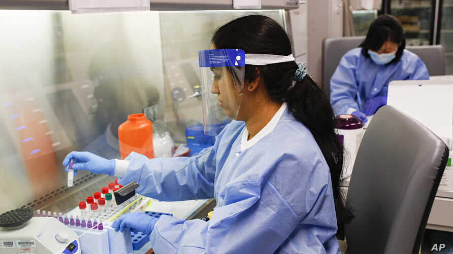 A laboratory technician prepares COVID-19 patient samples for semi-automatic testing at Northwell Health Labs, March 11, 2020, in Lake Success, N.Y.