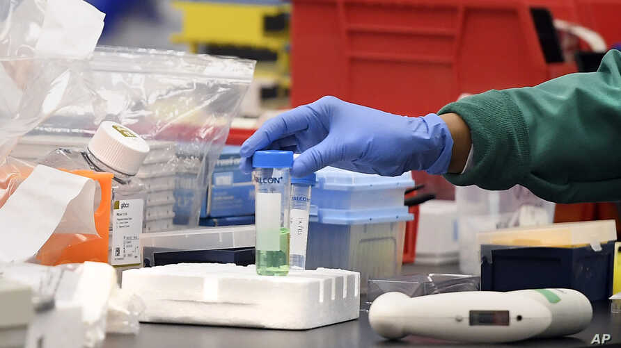 A researcher at Protein Sciences moves a vial in a lab, Thursday, March 12, 2020, in Meriden, Conn. The biotech company is…