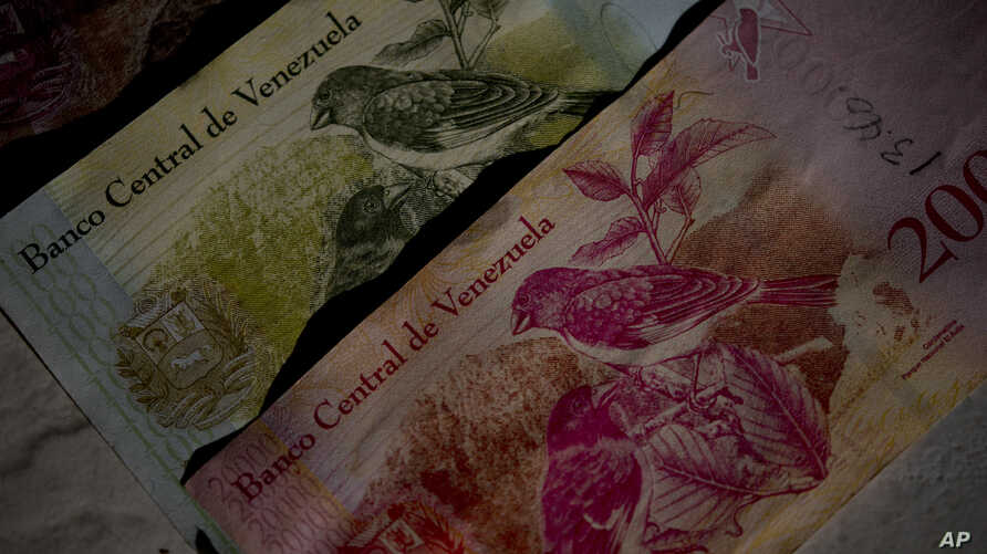 This Oct. 20, 2018 photo shows Bolivar bank notes decorated with images of Venezuela's red siskin bird, as part of rescue program in Caracas, Venezuela. Images of a tiny red bird that barely fills the palm of one's hand appear everywhere in…