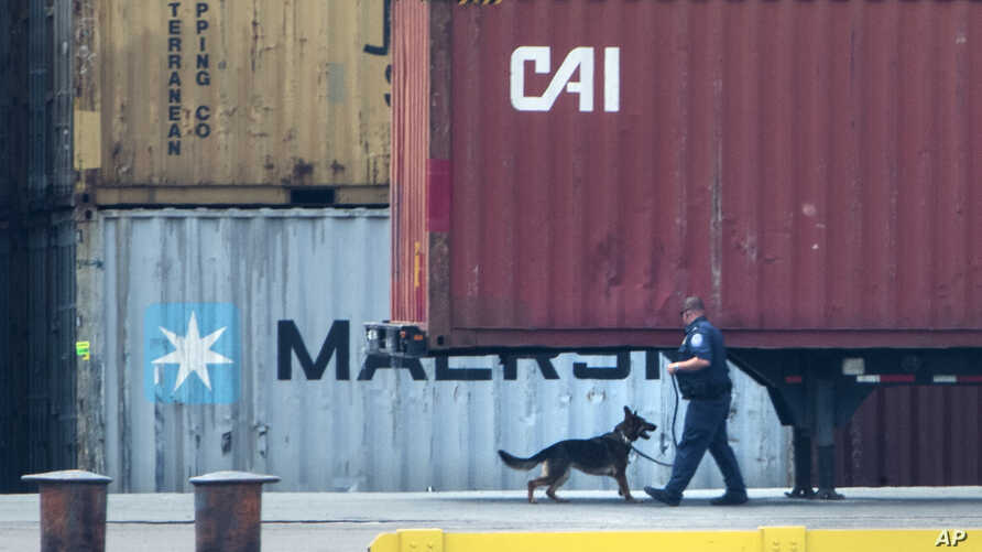 An officer with a dog inspects a container along the Delaware River in Philadelphia,  June 18, 2019.