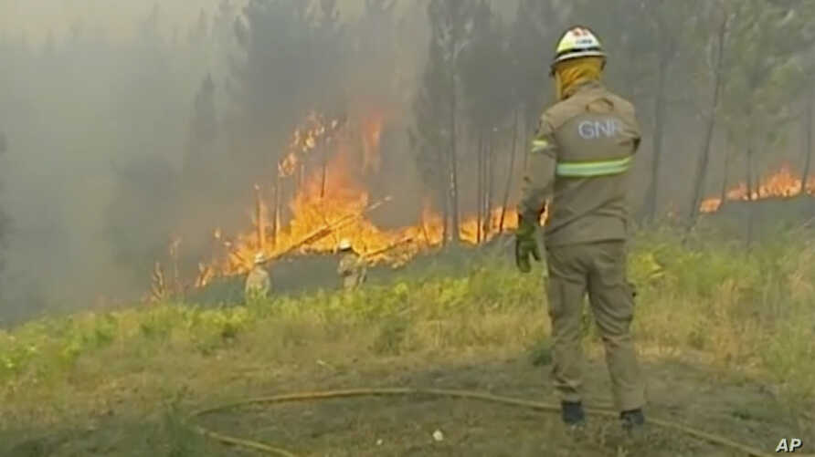 In this grab taken from video on Saturday, July 20, 2019 provided by TVI, members of the emergency services try to extinguish the fire, in Vila de Rei, Portugal. Portuguese authorities say 1,000 firefighters are working to contain wildfires that…