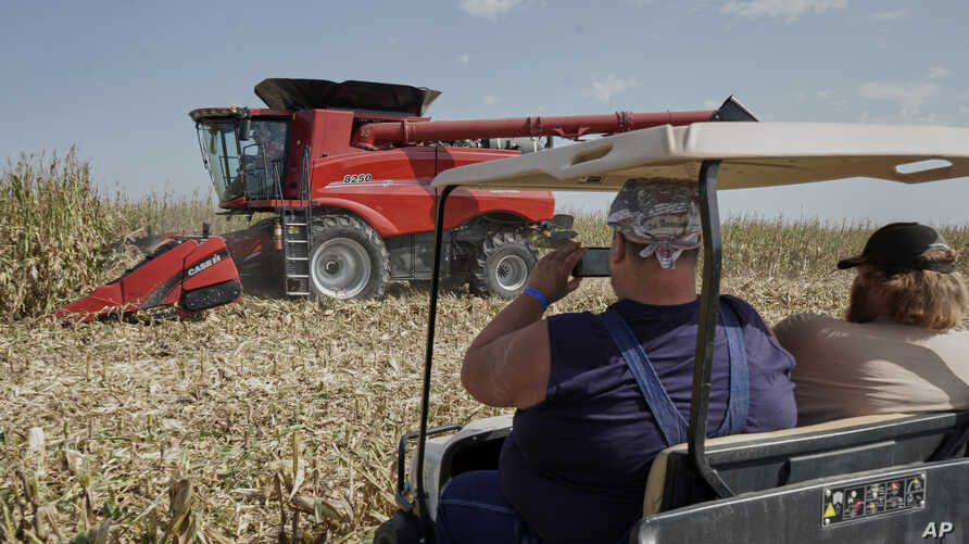 Visitors to the Husker Harvest Days farm show in Grand Island, Neb., follow a corn harvesting demonstration, Tuesday, Sept. 10, 2019. (AP Photo/Nati Harnik)