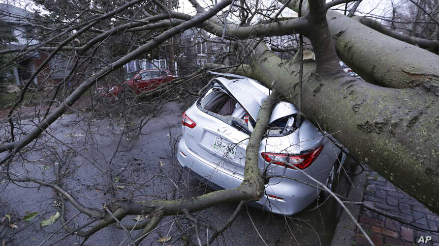 A car crushed by a tree sits on a street after a tornado touched down Tuesday, March 3, 2020, in Nashville, Tenn.  (AP Photo…
