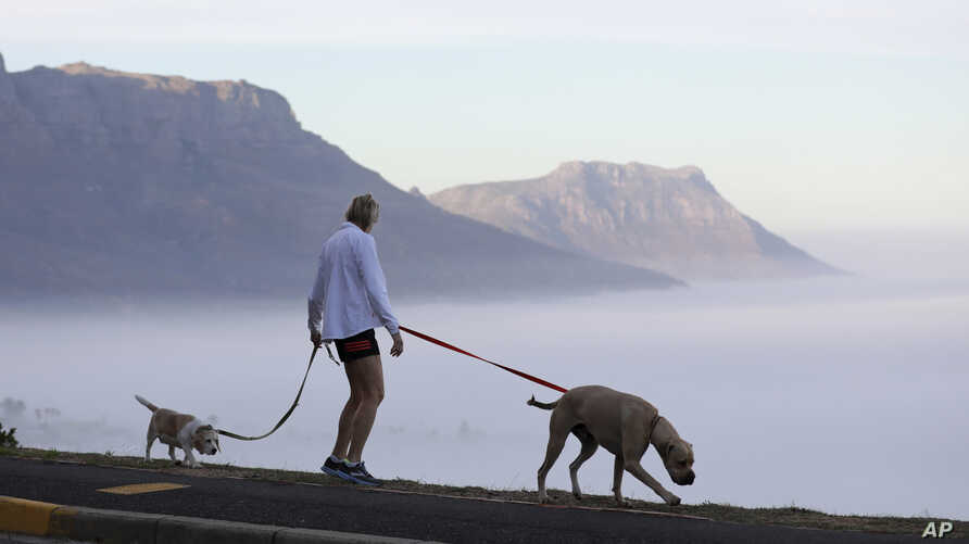 A woman walks her dogs in Cape Town, South Africa, Friday May 1, 2020, as the government began a phased easing of its strict…