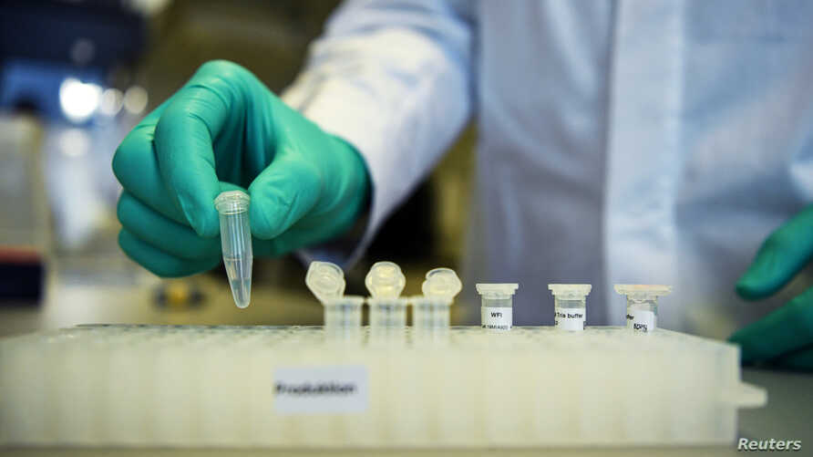 FILE PHOTO: An employee of German biopharmaceutical company CureVac, demonstrates research workflow on a vaccine for the…
