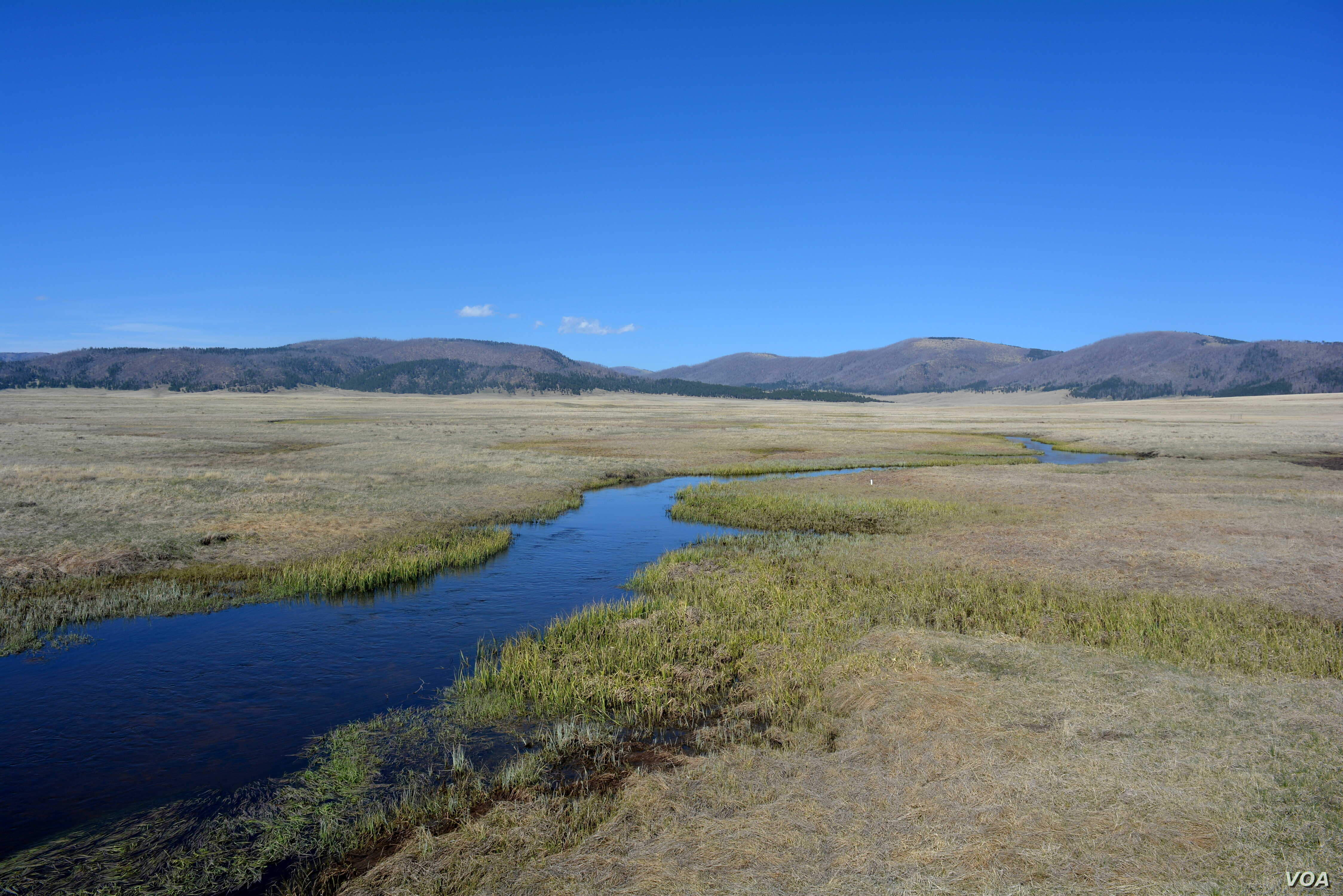 At Valles Caldera National Preserve in New Mexico, lush green meadows and a clear blue stream paint a deceptive picture of a landscape that was once the site of a massive volcanic eruption.