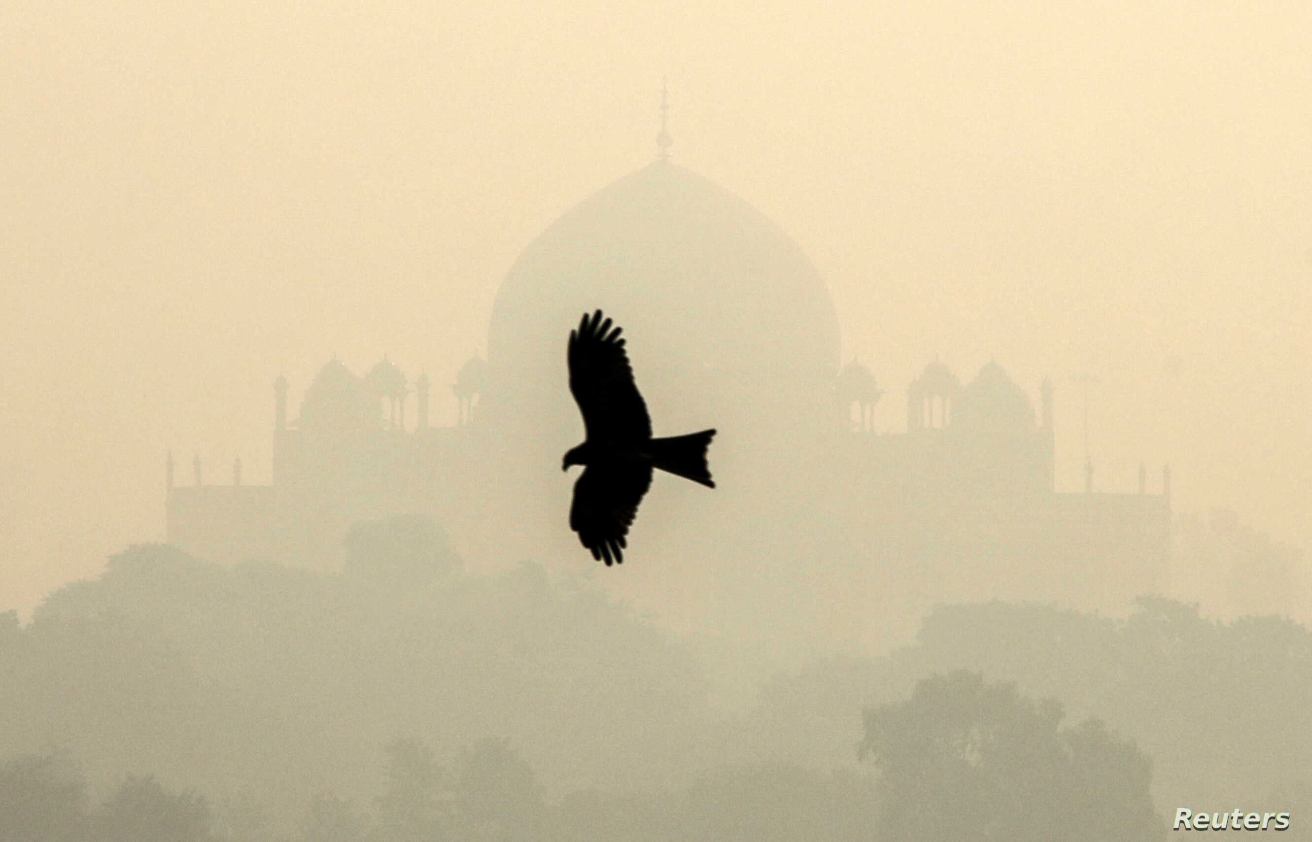 A bird flies past the Humayun's Tomb shrouded in smog in New Delhi, India, Oct. 29, 2018.