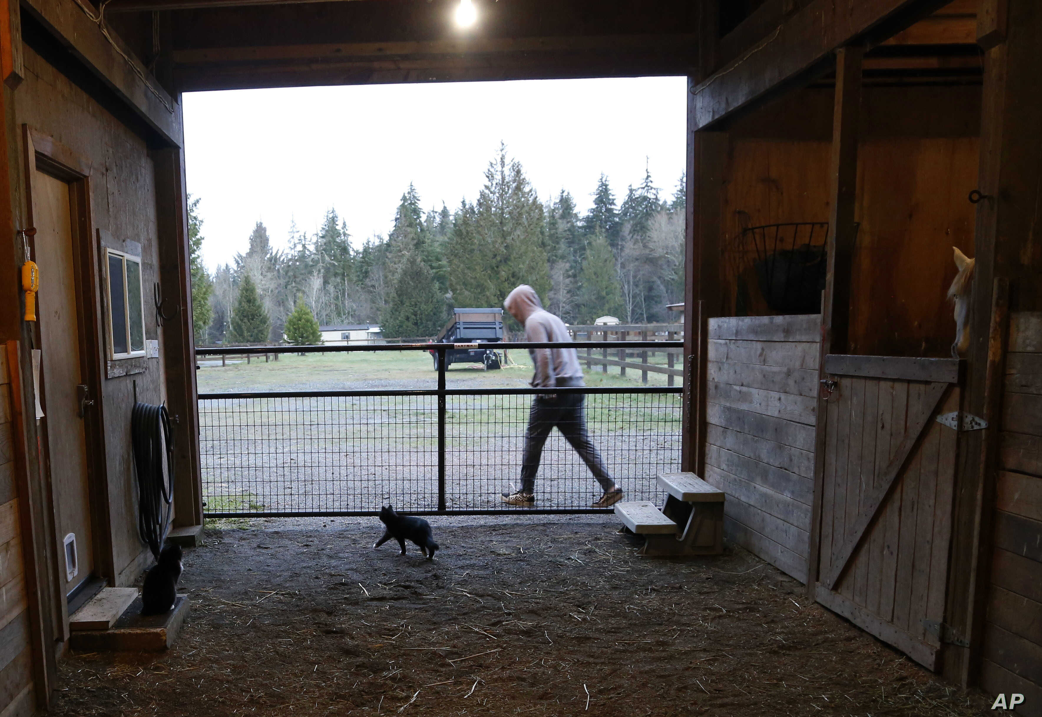 FILE - Robel, an 18-year-old tech addict from California, leaves a barn after helping feed animals at the Rise Up Ranch outside rural Carnation, Wash., Dec. 10, 2018.