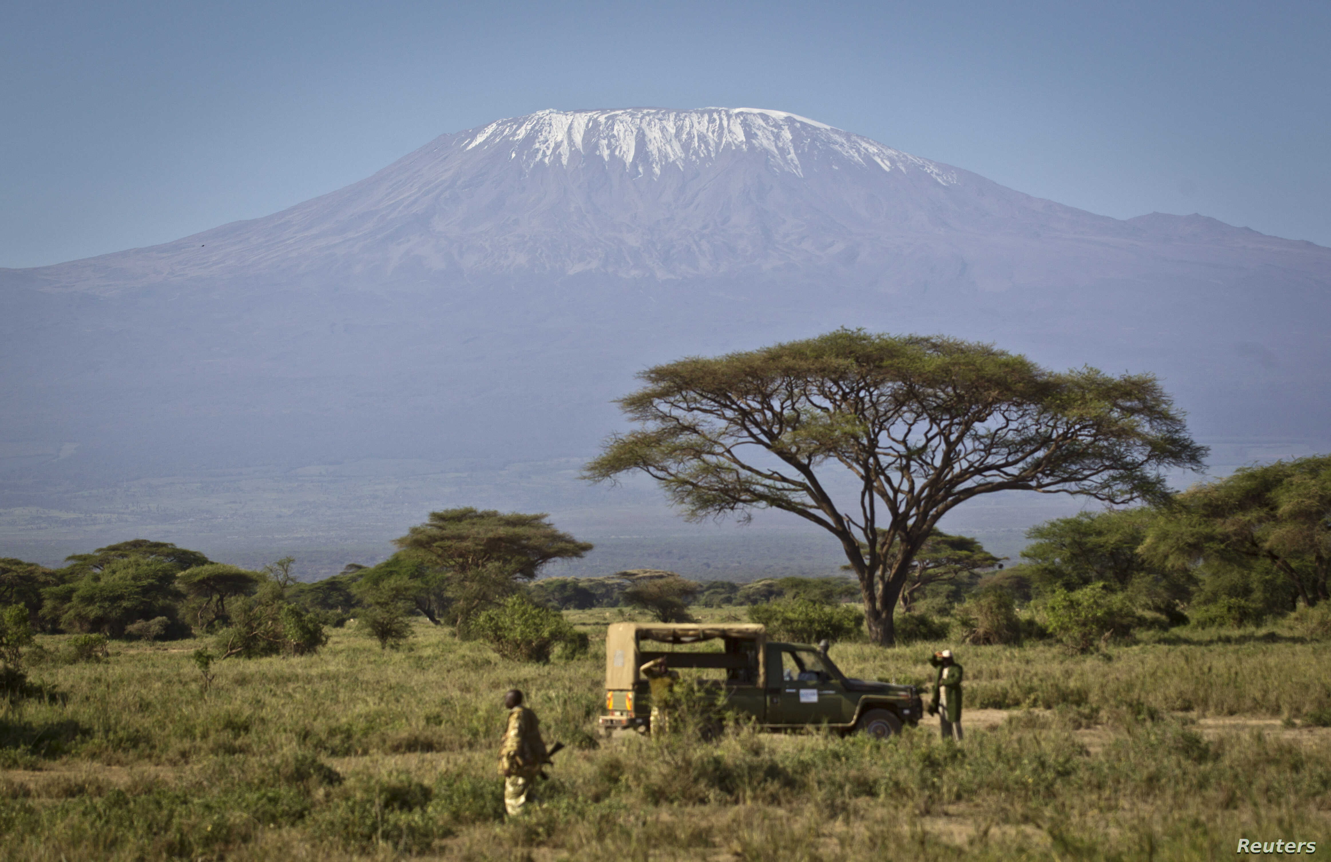 In this Tuesday, Feb. 19, 2013 photo, the highest mountain in Africa, Mount Kilimanjaro in Tanzania, looms in the background as a team from the Kenya Wildlife Service (KWS) and the International Fund for Animal Welfare (IFAW) prepares to fit elephant...