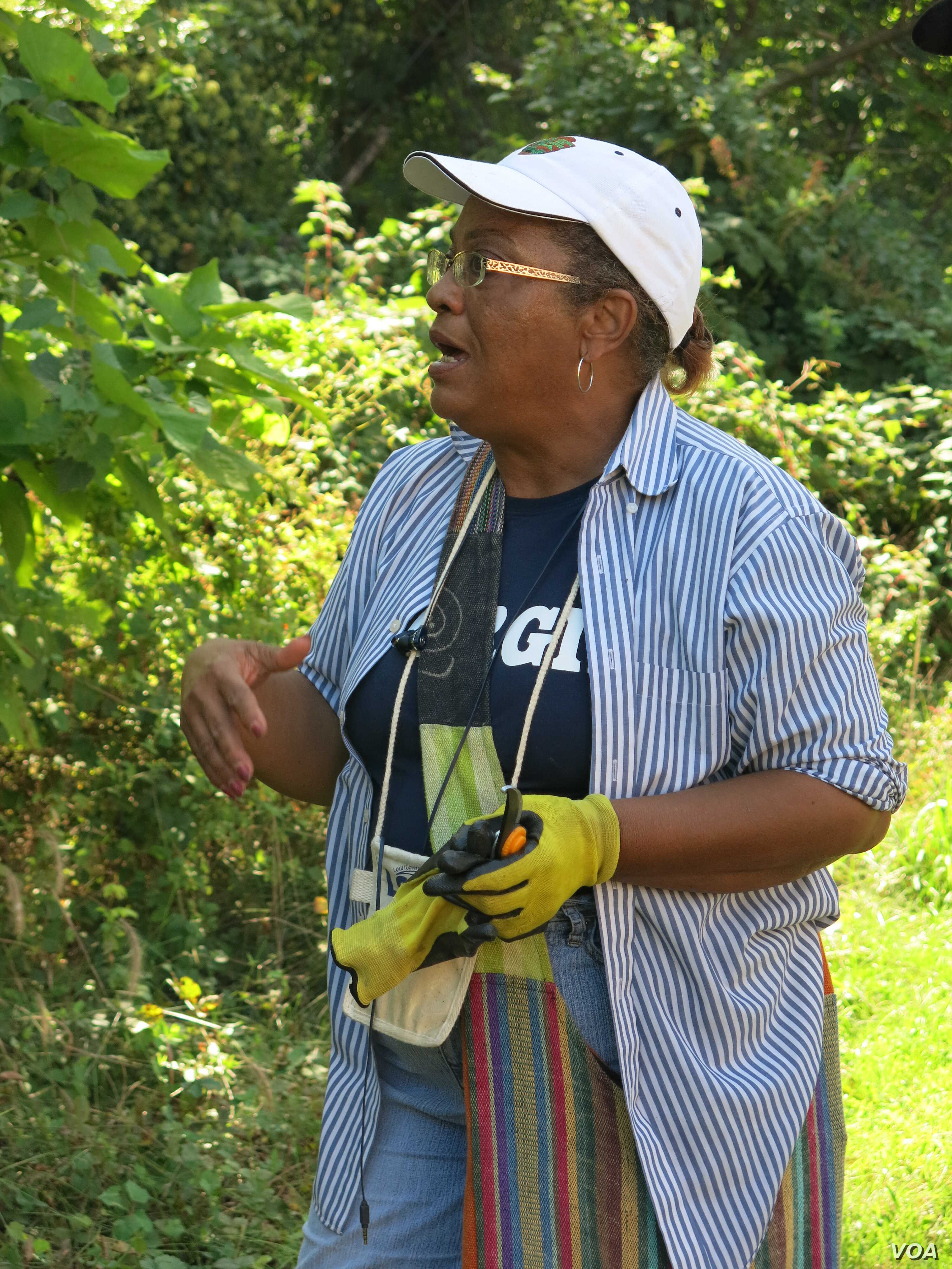 Clippers in hand, Forest Heights Mayor Jacqueline Goodall is on a tree-planting campaign to improve her town's health and welfare. (VOA/R. Skirble)