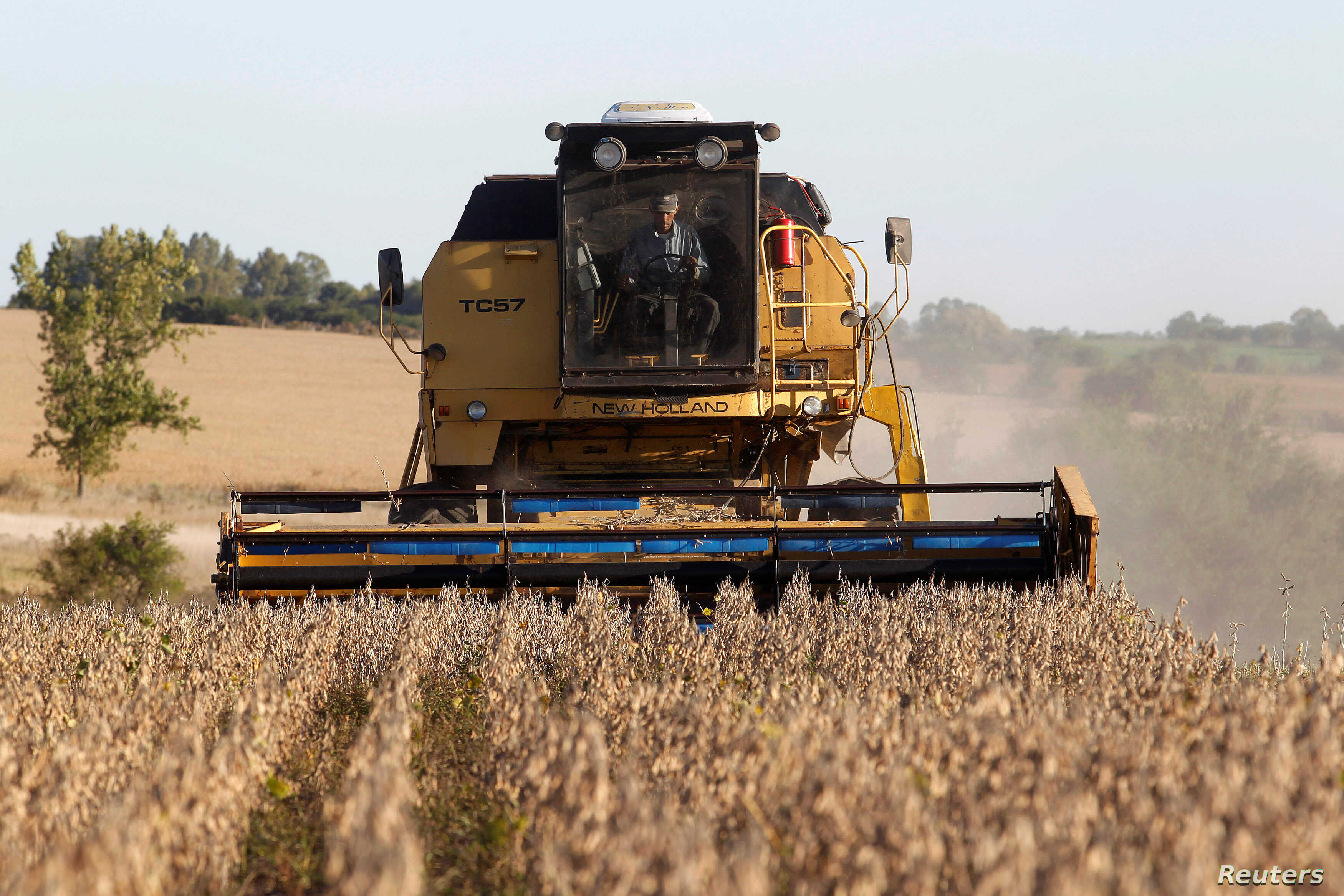FILE - Soybeans are harvested on a farm on the outskirts of San Jose, Uruguay, April 27, 2011.