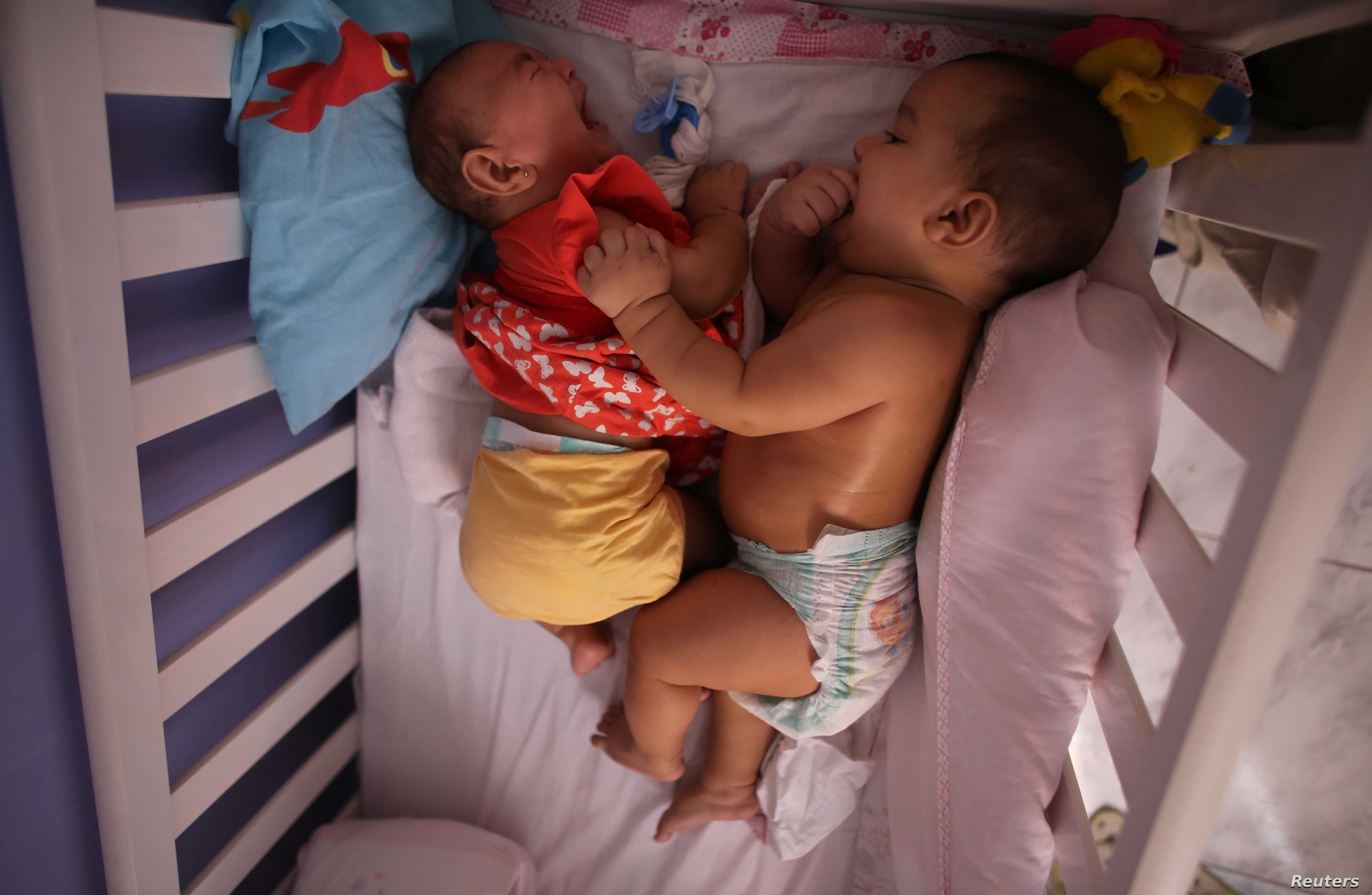 Five-month-old twins, Laura (L) and Lucas lie in their bed at their house in Santos, Sao Paulo state, Brazi, April 20, 2016.