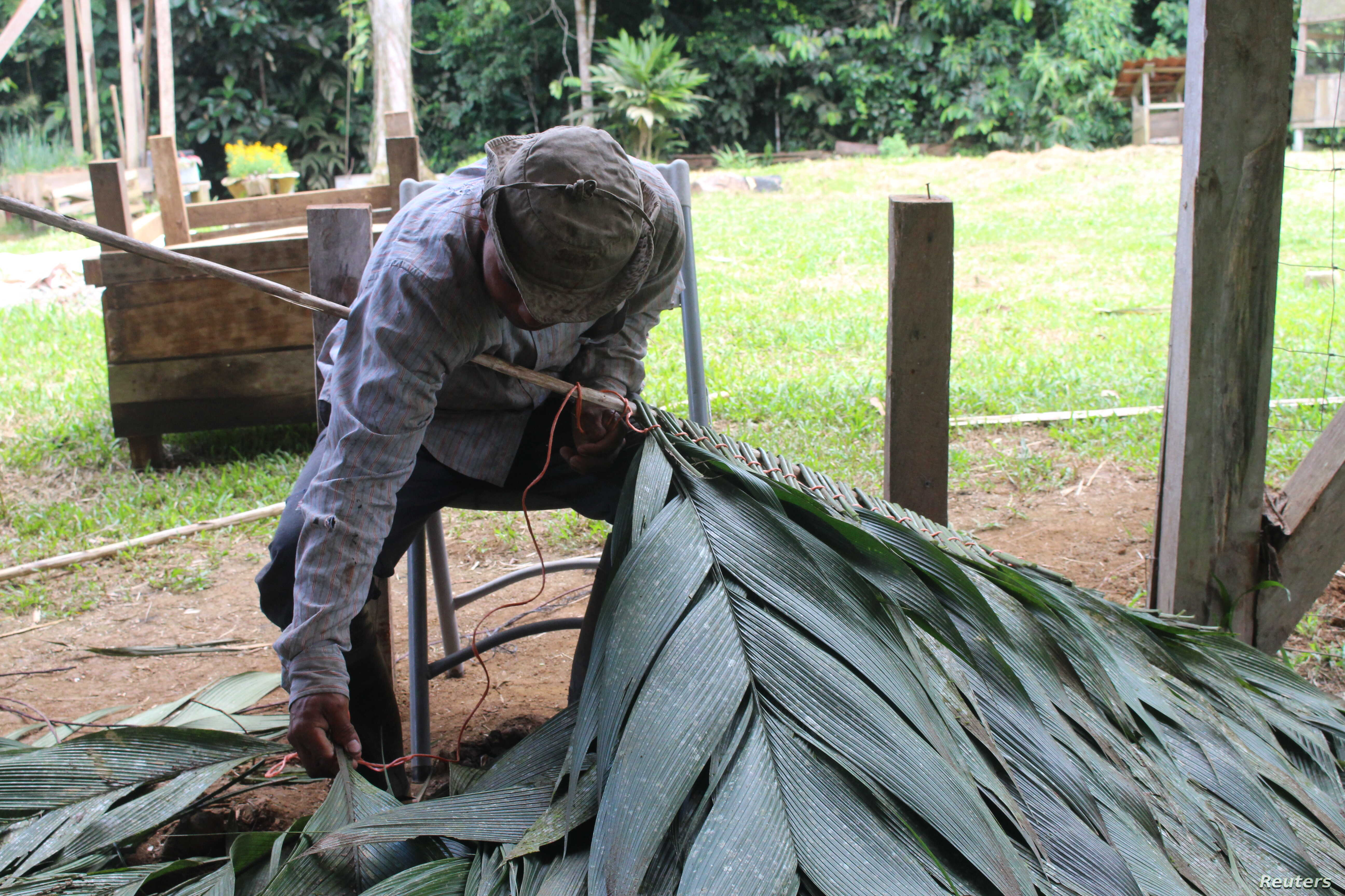 A man shows how to thread plant leaves onto a pole to make thatched roofing at the Siwakabata agro-ecology farm, Talamanca, Costa Rica, May 10, 2018.