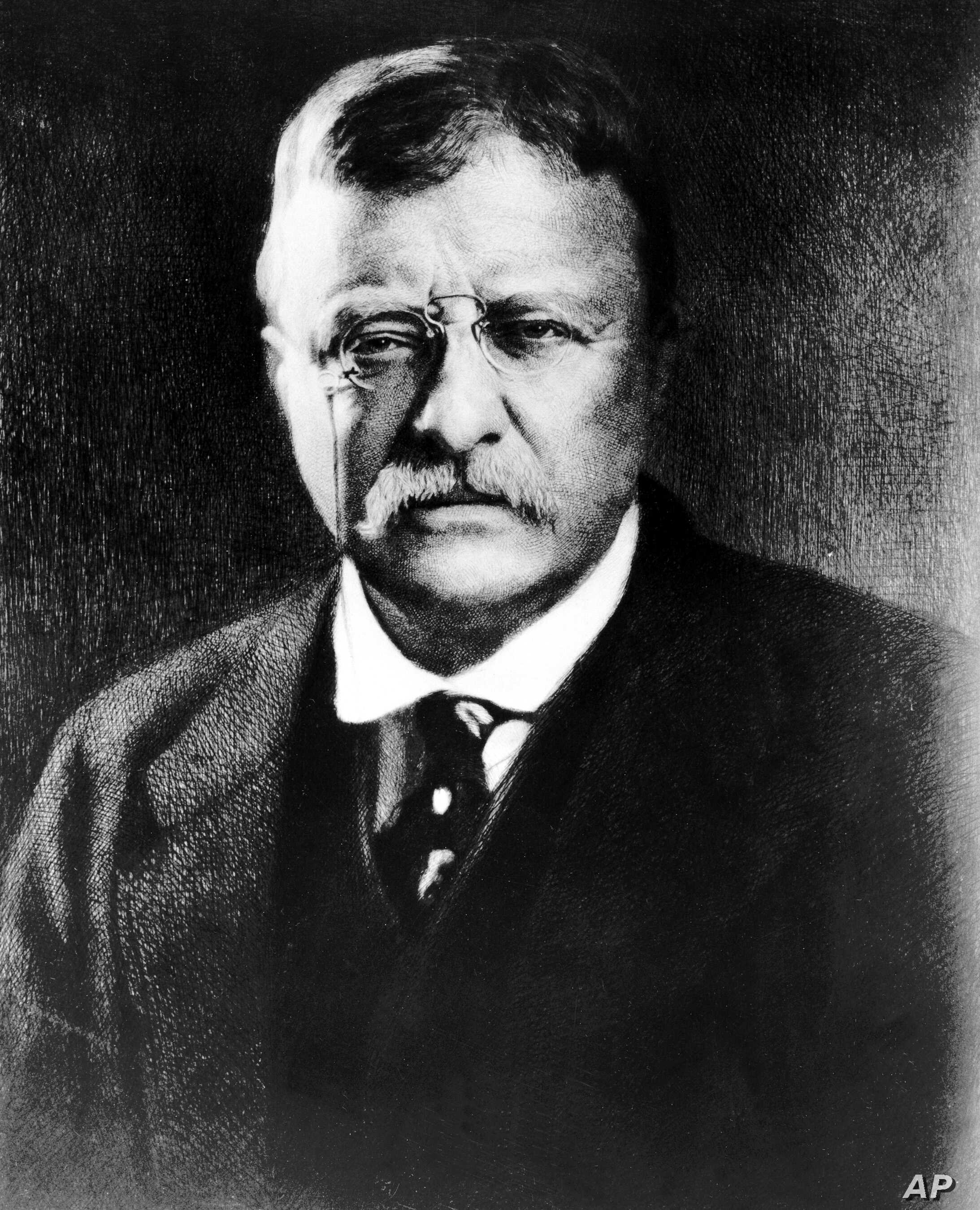 """Theodore Roosevelt, the 26th U.S. president, seen in this undated picture, """"could be blind to his own contradictions. But it was couched in a warm, almost ebullient style,"""" says historian David Greenberg of Rutgers University."""