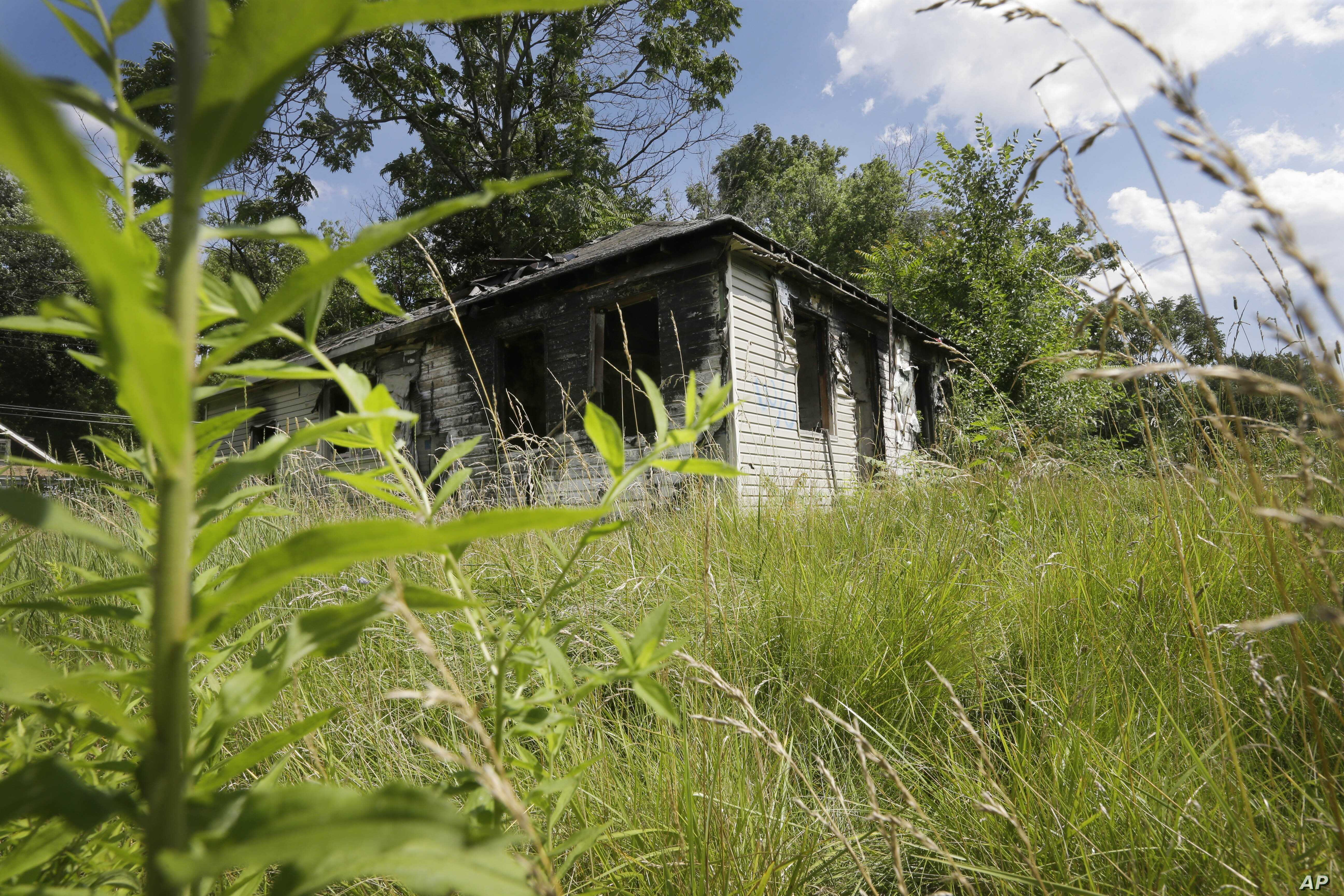 Studies: More Green Space, Less Crime, Depression in Poor