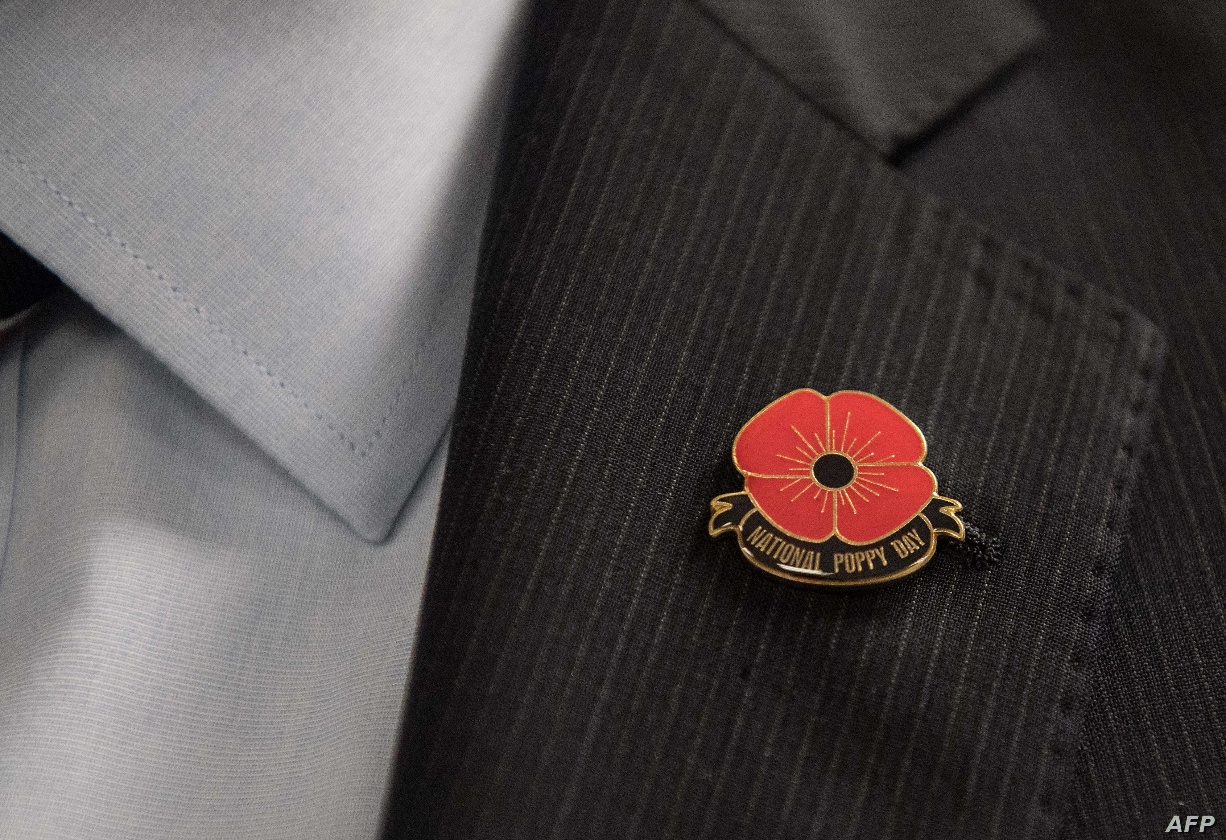 US Marks First National Poppy Day | Voice of America - English