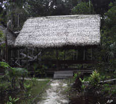 Retreats like Onanynan Shobo in the Peruvian jungle, have become popular destinations for the medical tourism industry.