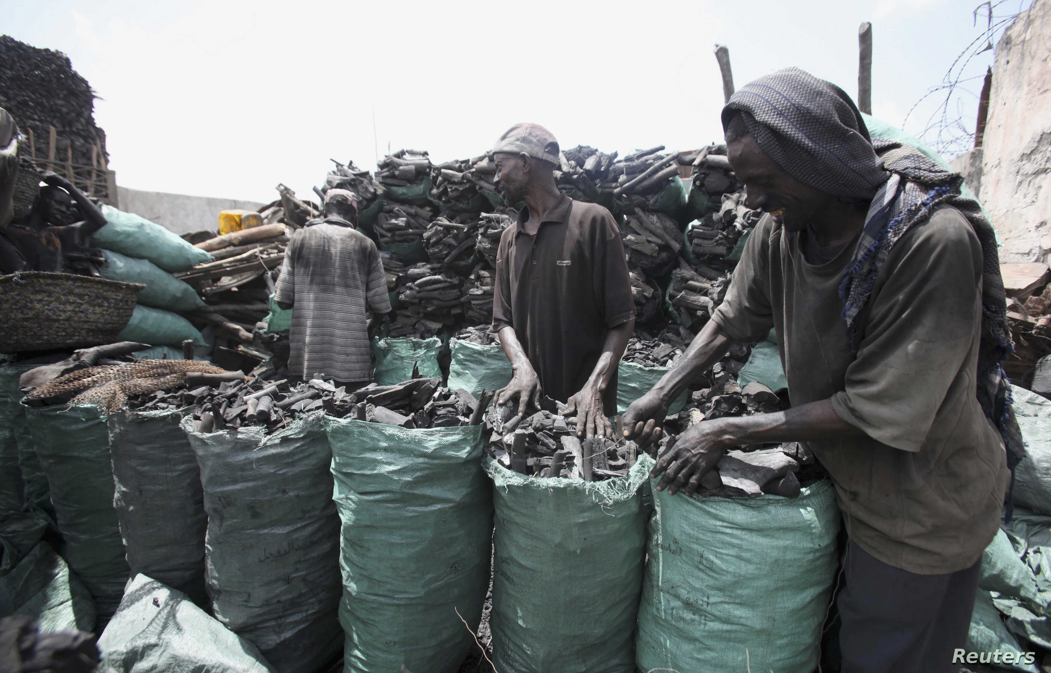UN: Kenyan Peacekeepers Aided Illegal Somalia Charcoal