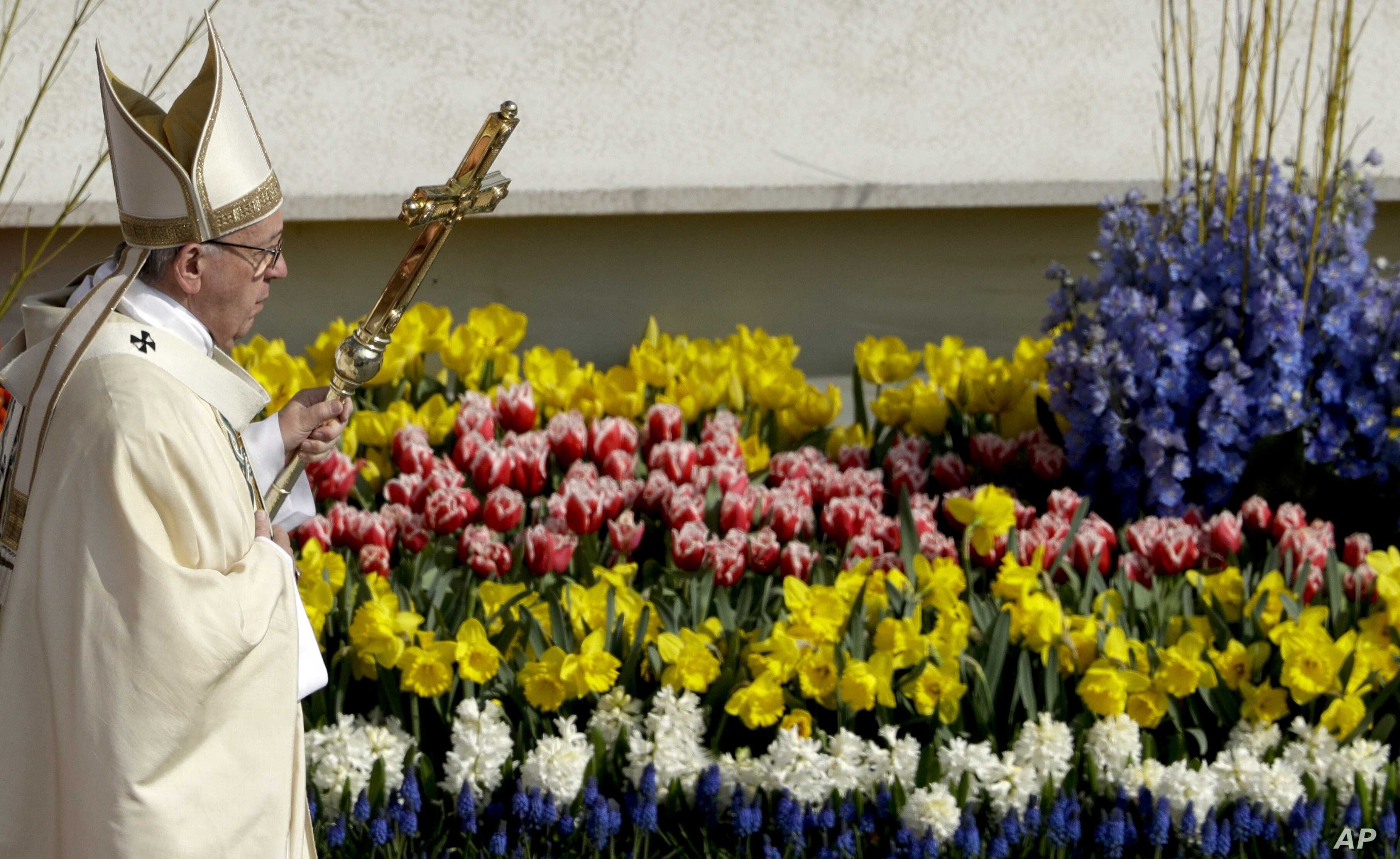 Pope Francis walks past flowers as he celebrates the Easter Mass, in St. Peter's Square, at the Vatican, April 16, 2017.