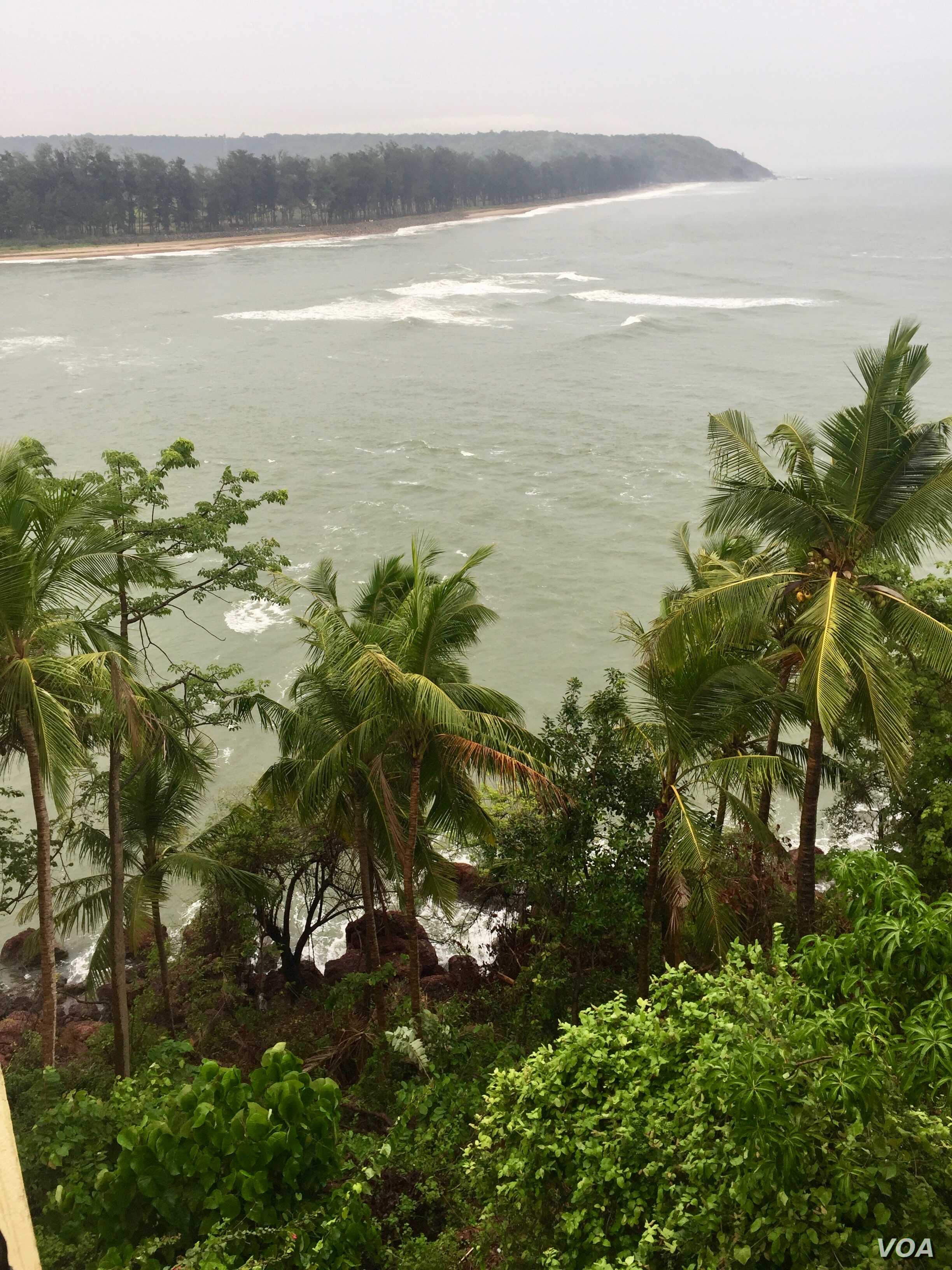 A growing number of people from Delhi have relocated to Goa, a palm fringed, coastal city.