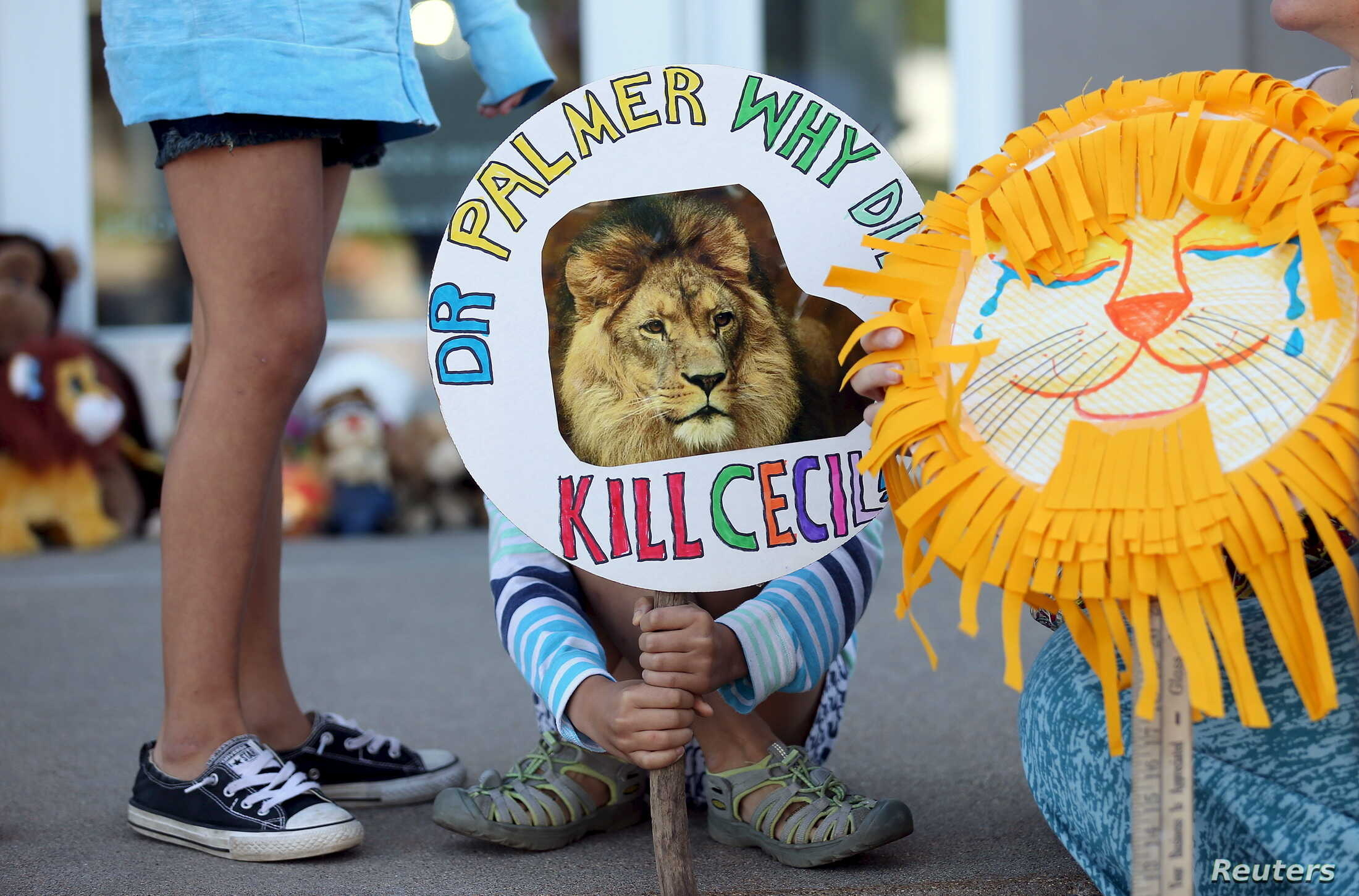 Piper Hoppe, 10, from Minnetonka, Minnesota, holds a sign at the doorway of River Bluff Dental clinic in protest against the killing of a famous lion in Zimbabwe, in Bloomington, Minnesota July 29, 2015. A Zimbabwean court on Wednesday charged a prof...
