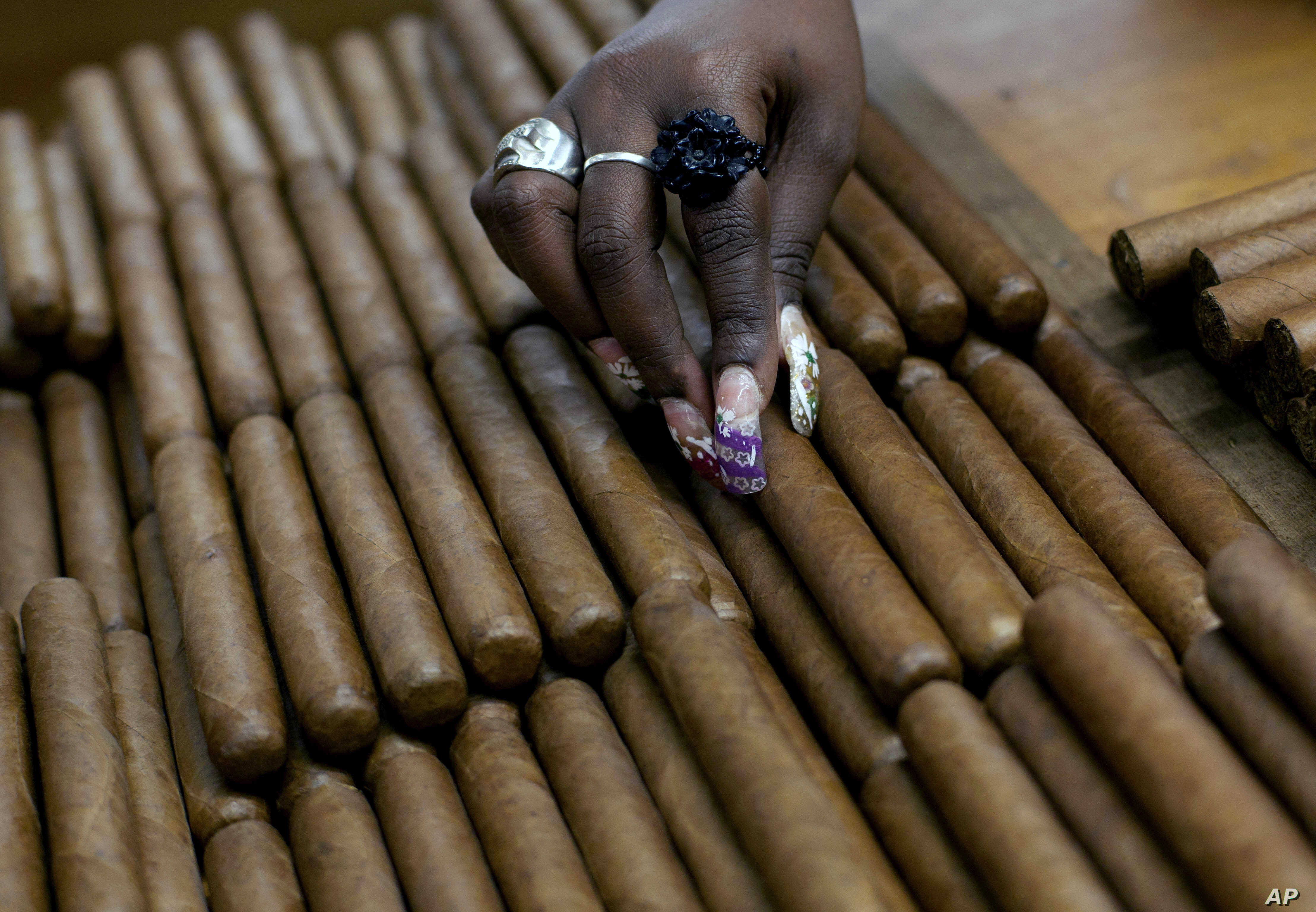 FILE -  a worker selects cigars at the H. Upmann cigar factory, where people can take tours as part of the 15th annual Cigar Festival, in Havana, Cuba.