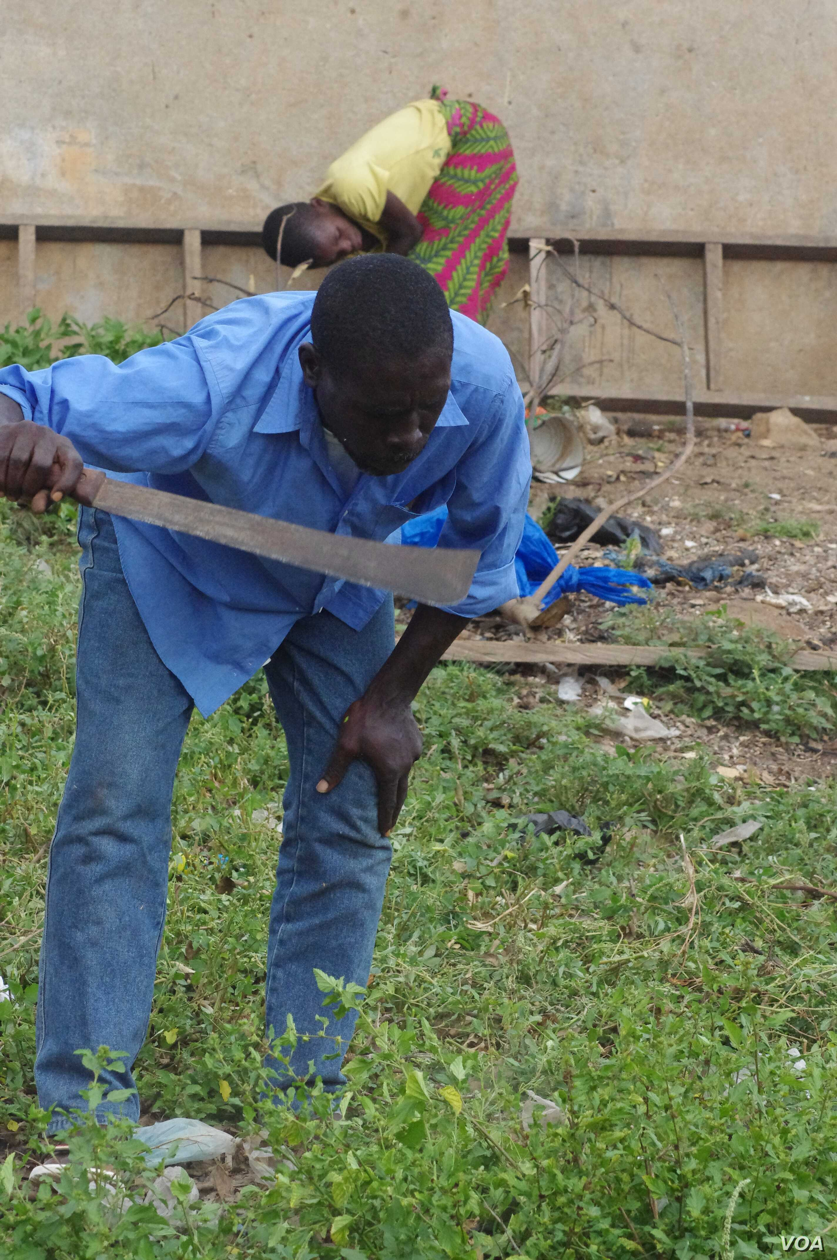 Dosso Abou clears brush to support himself, his wife and their five children, Bouake, Ivory Coast, May 4, 2013. (R. Corey-Boulet/VOA)