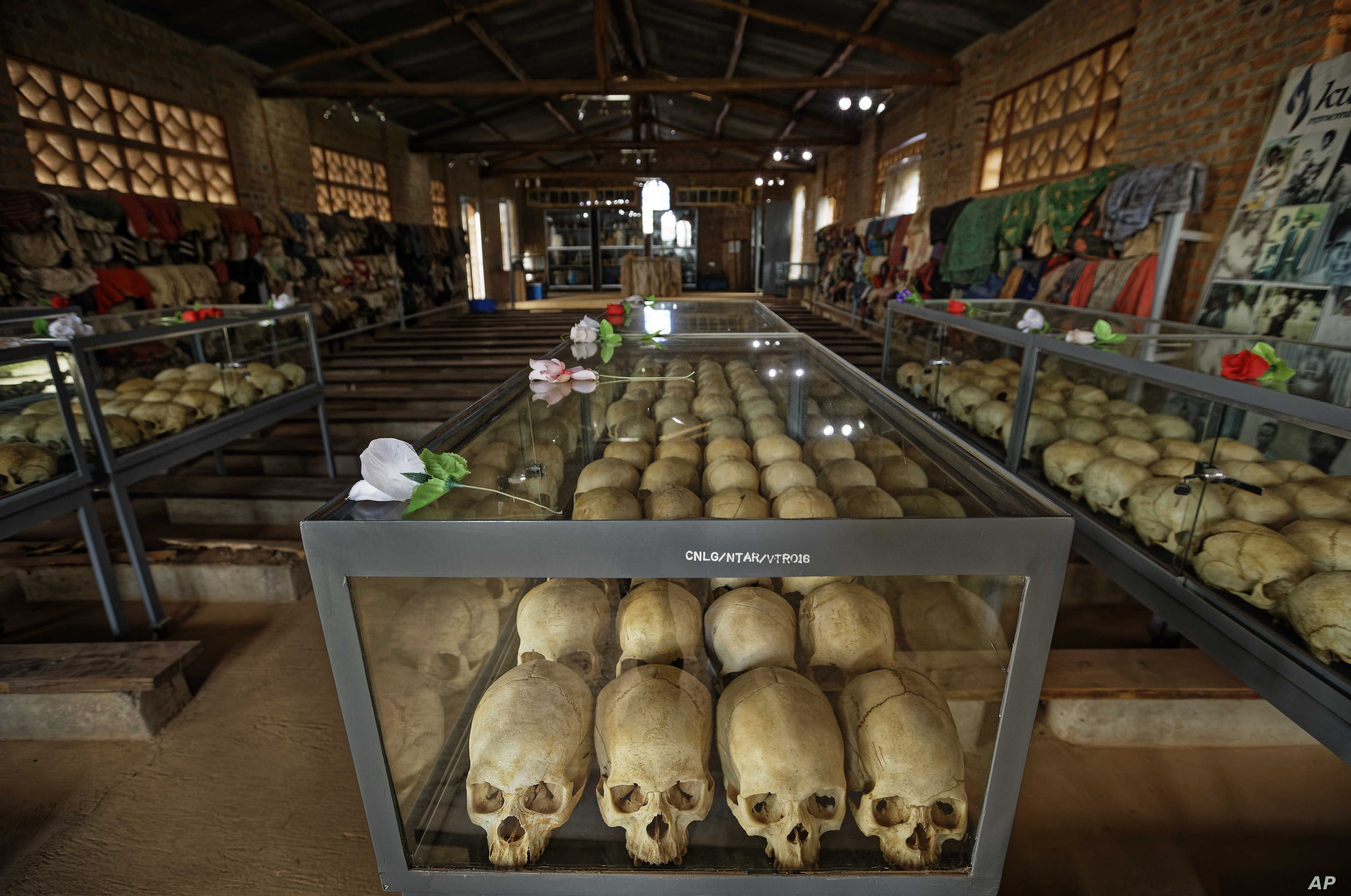 Skulls of some of those who were slaughtered as they sought refuge in the church sit in glass cases, kept as a memorial to the thousands who were killed in the 1994 genocide in Rwanda.