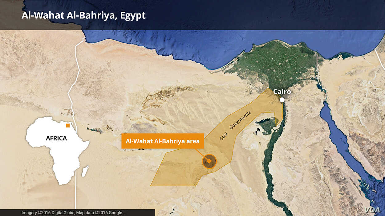 12 Suspected Militants Killed in Egypt | Voice of America