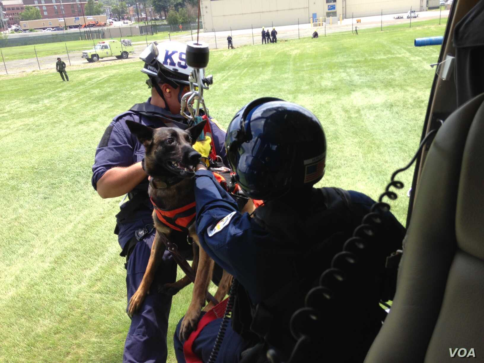 A search-and-rescue dog and its trainer are hoisted up to a helicopter as part of their training at the U.S. Park Police Aviation Section in Washington, July 11, 2015. (Credit: Julie Taboh)