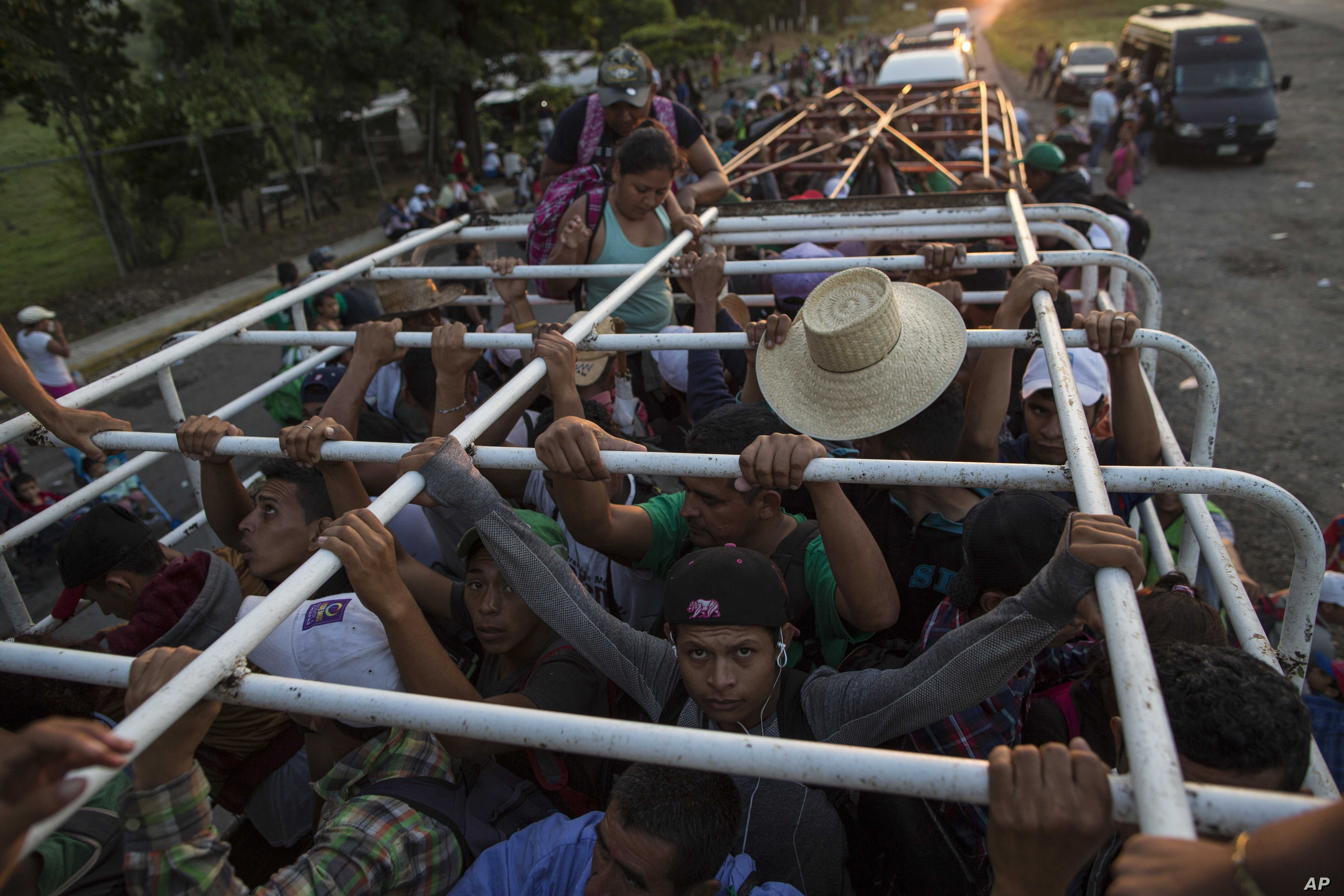 Migrants travel on a cattle truck, as a thousands-strong caravan of Central American migrants slowly makes its way toward the U.S. border, between Pijijiapan and Arriaga, Mexico, Oct. 26, 2018.