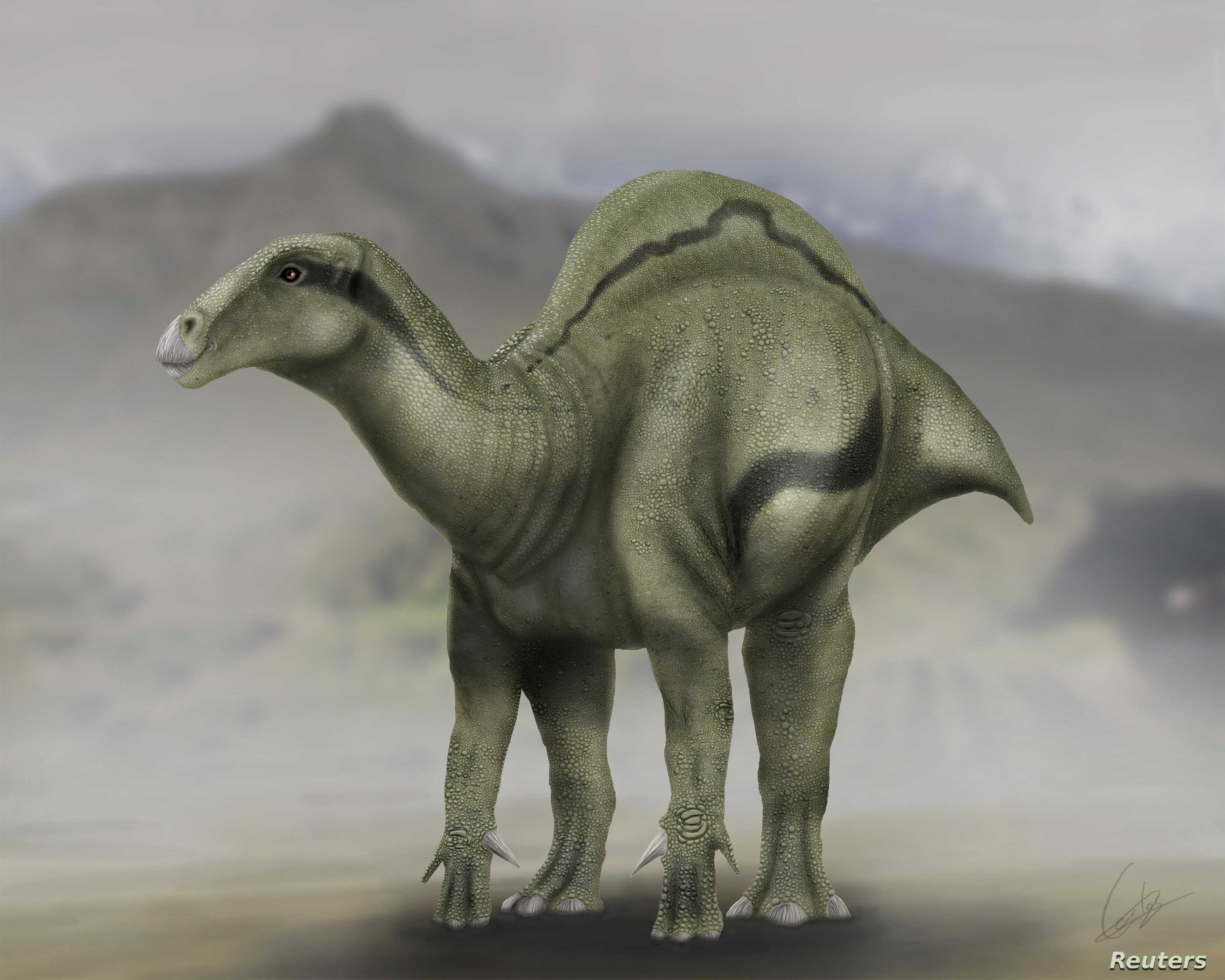 A life reconstruction of Morelladon is shown in this illustration provided by Carlos de Miguel Chaves.
