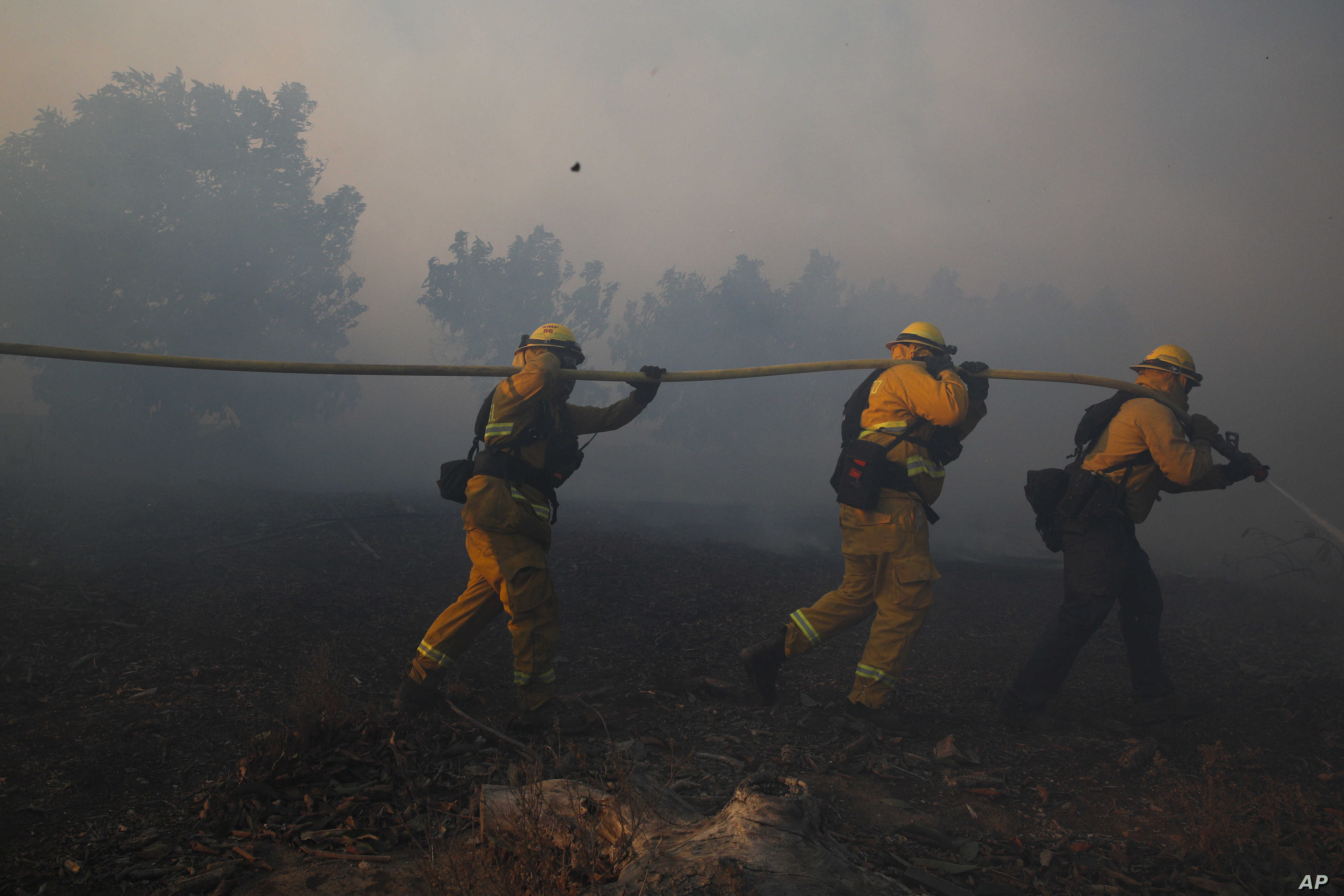 Firefighters put out a wildfire burning in an orchard, Dec. 5, 2017, in Santa Paula, Calif. The city is about 50 miles northwest of Los Angeles.