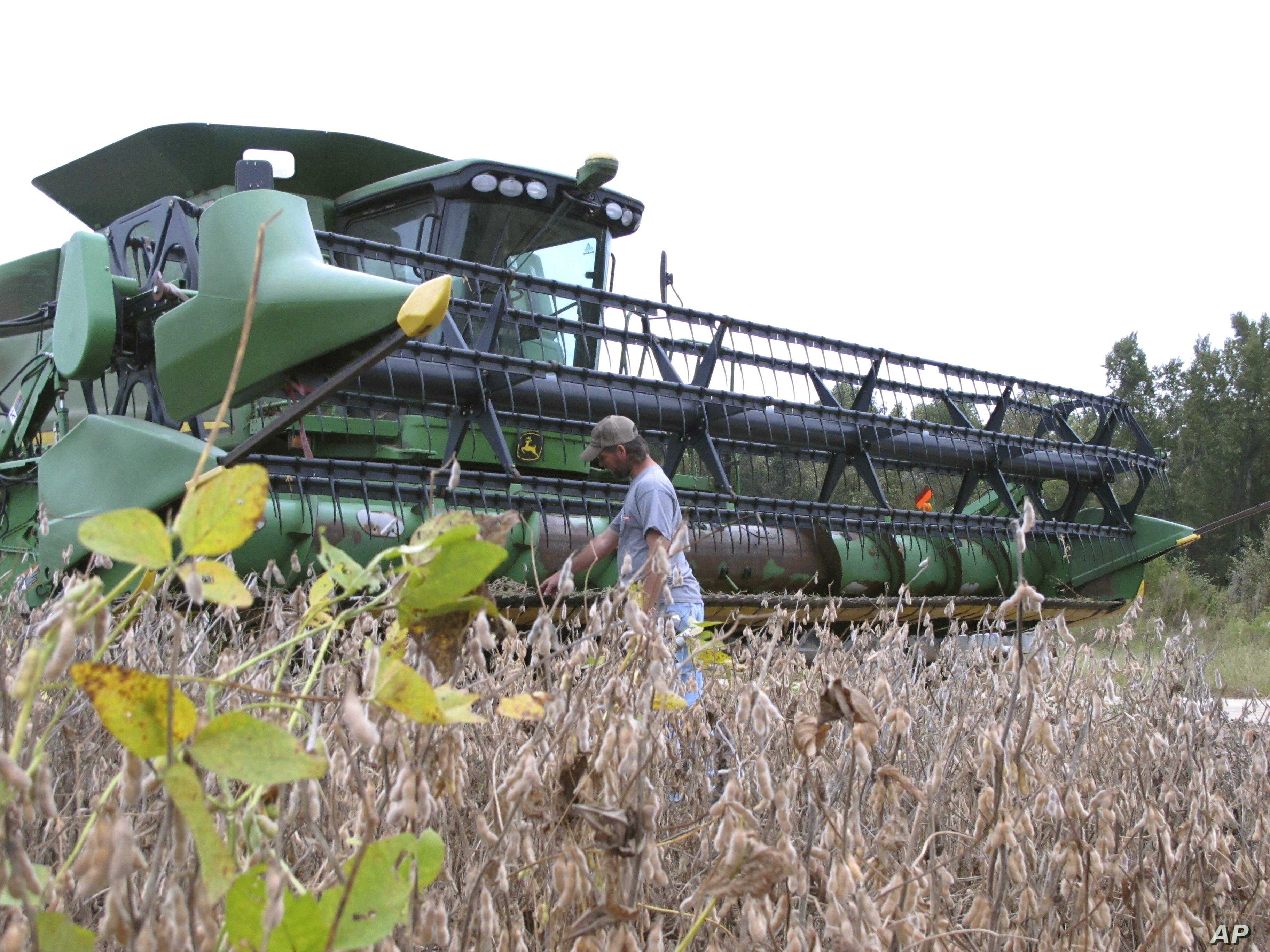 FILE - A farmer checks his combine as he gets ready to harvest his soybean crop at his farm in Turbeville, South Carolina, Oct. 5, 2016.