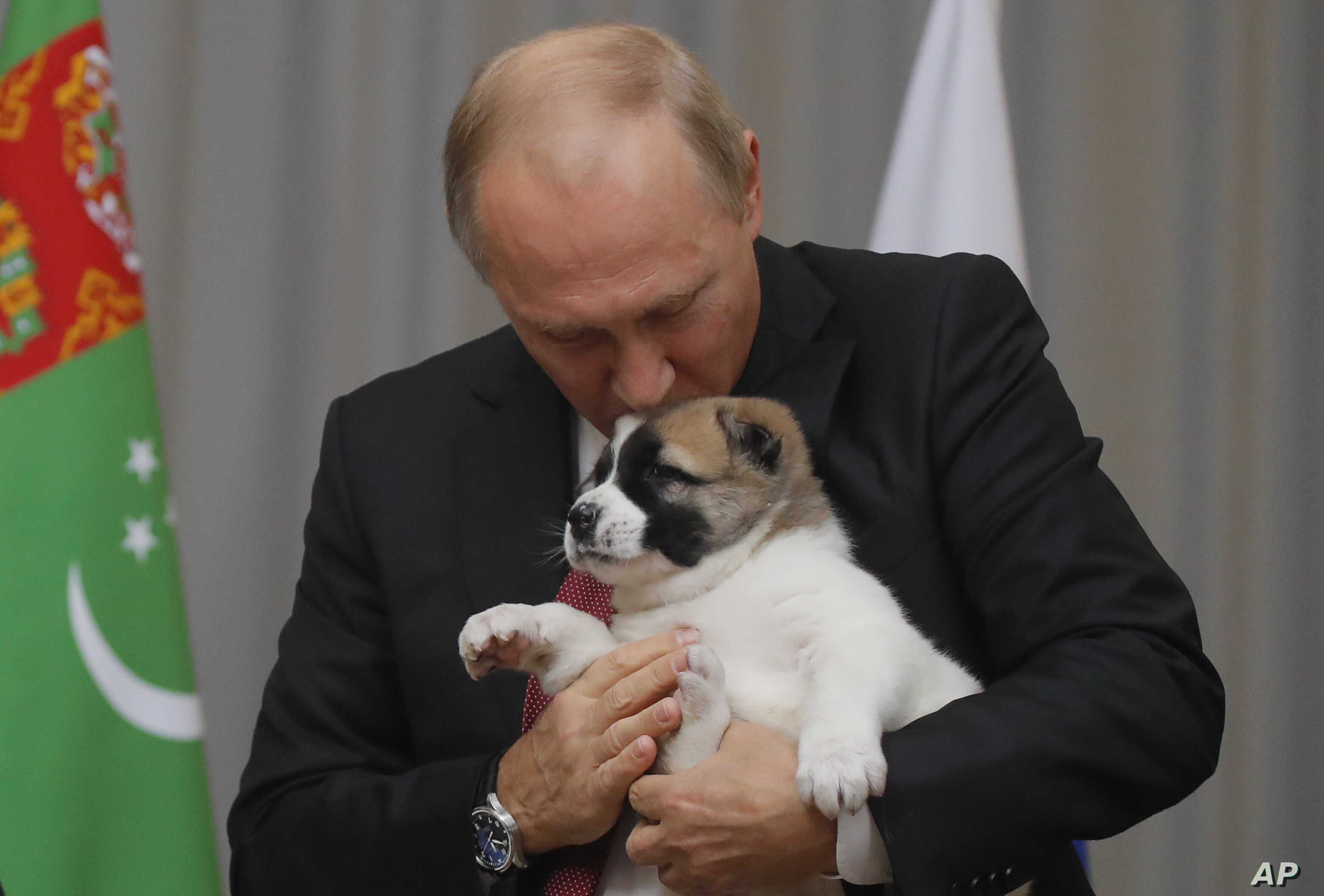 Russian President Vladimir Putin holds a puppy presented to him by Turkmenistan's President Gurbanguly Berdymukhamedov during their meeting in the Bocharov Ruchei residence in the Black Sea resort of Sochi, Russia, Oct. 11, 2017.