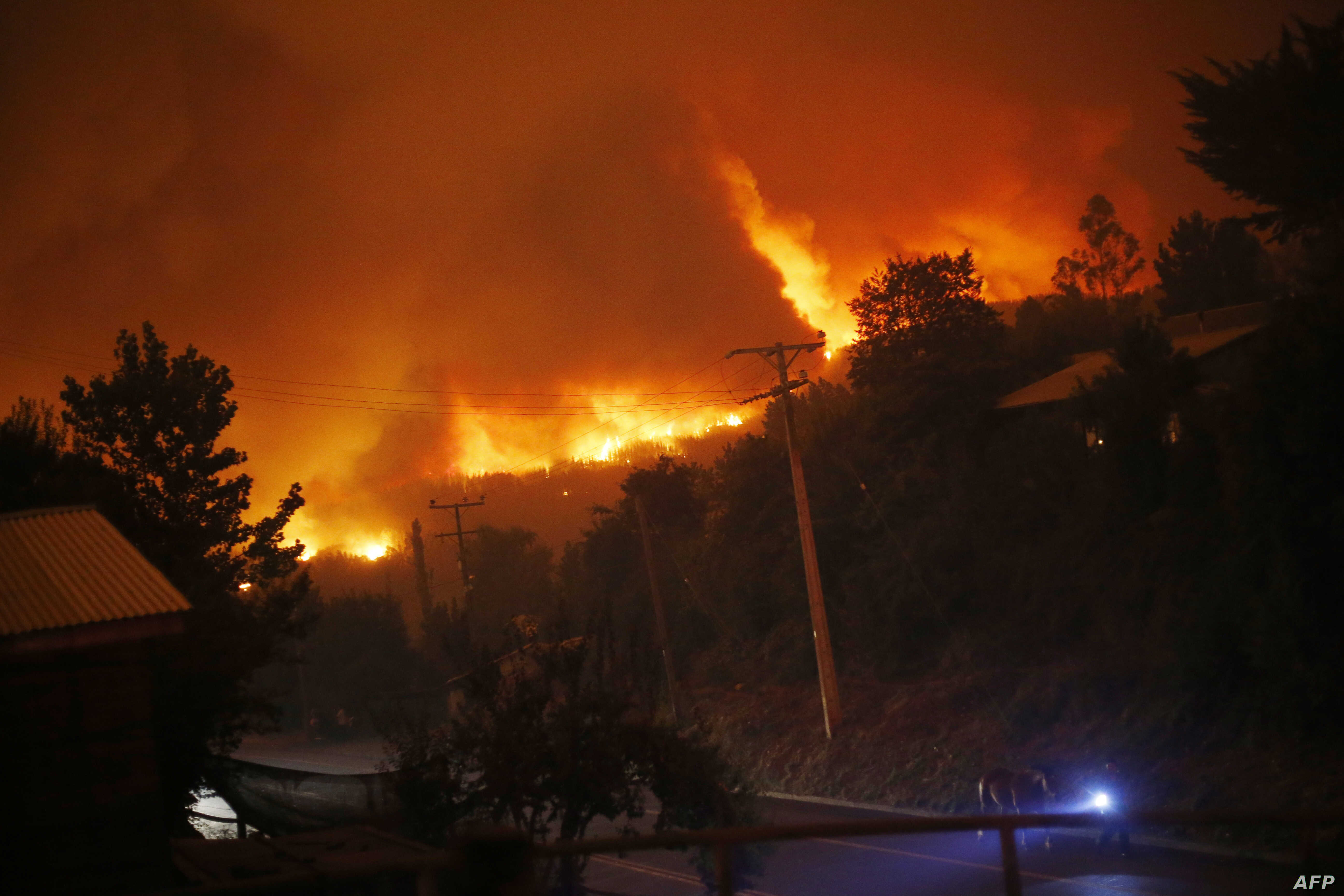 A forest fire burns out of control in Santa Olga, 240 km south of Santiago, Jan. 25, 2017.