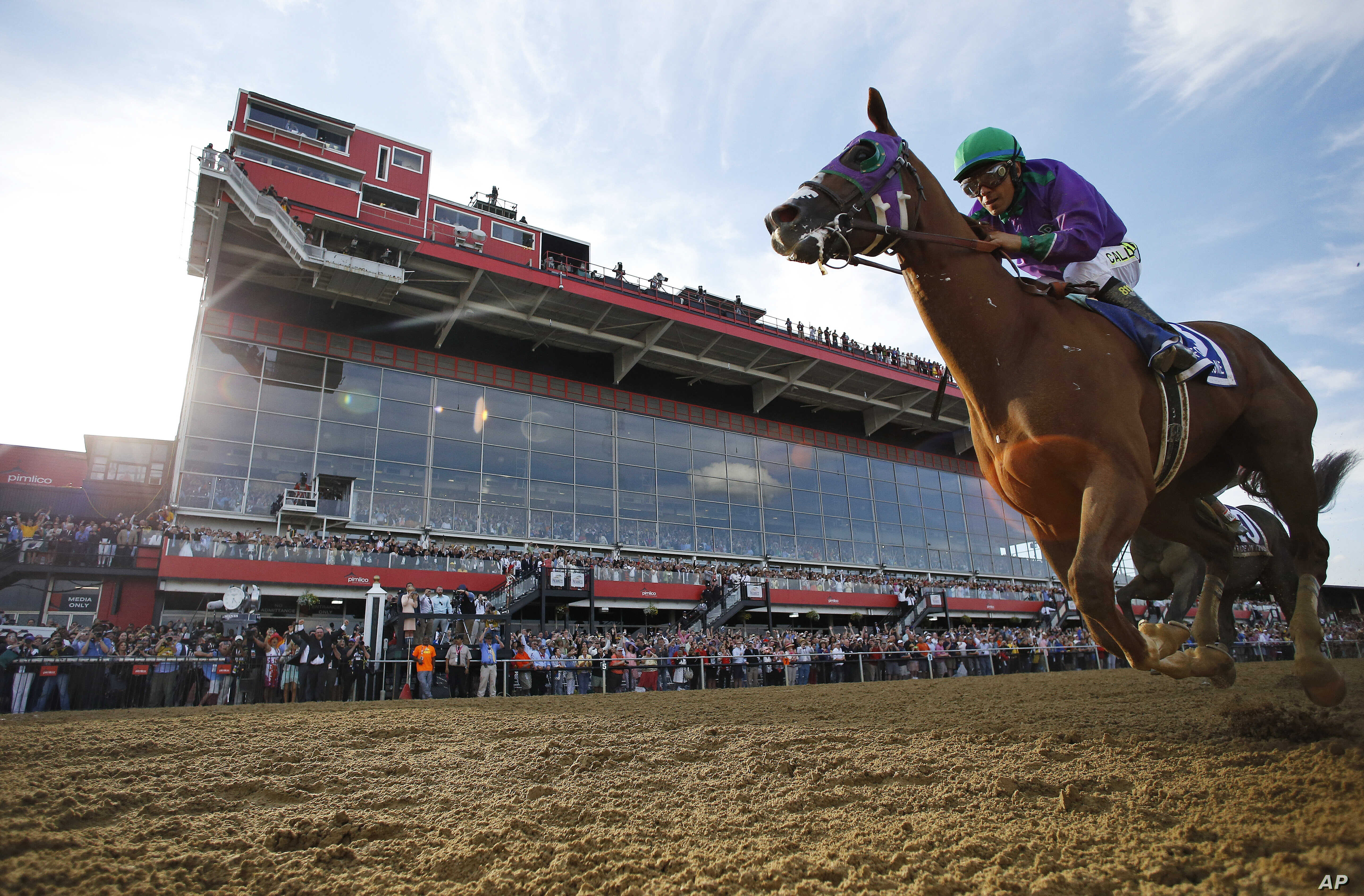 California Chrome Wins Preakness Stakes | Voice of America