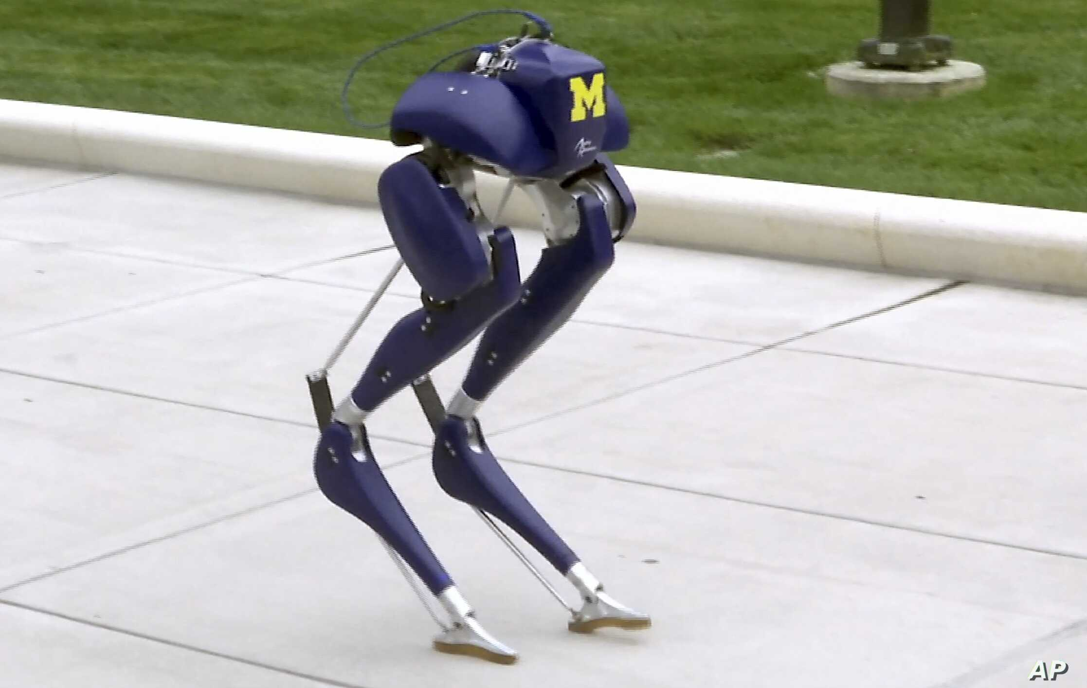 "In this image made from video, a new robot, named ""Cassie,"" walks on the campus of the University of Michigan in Ann Arbor, Michigan, Oct. 23, 2017."