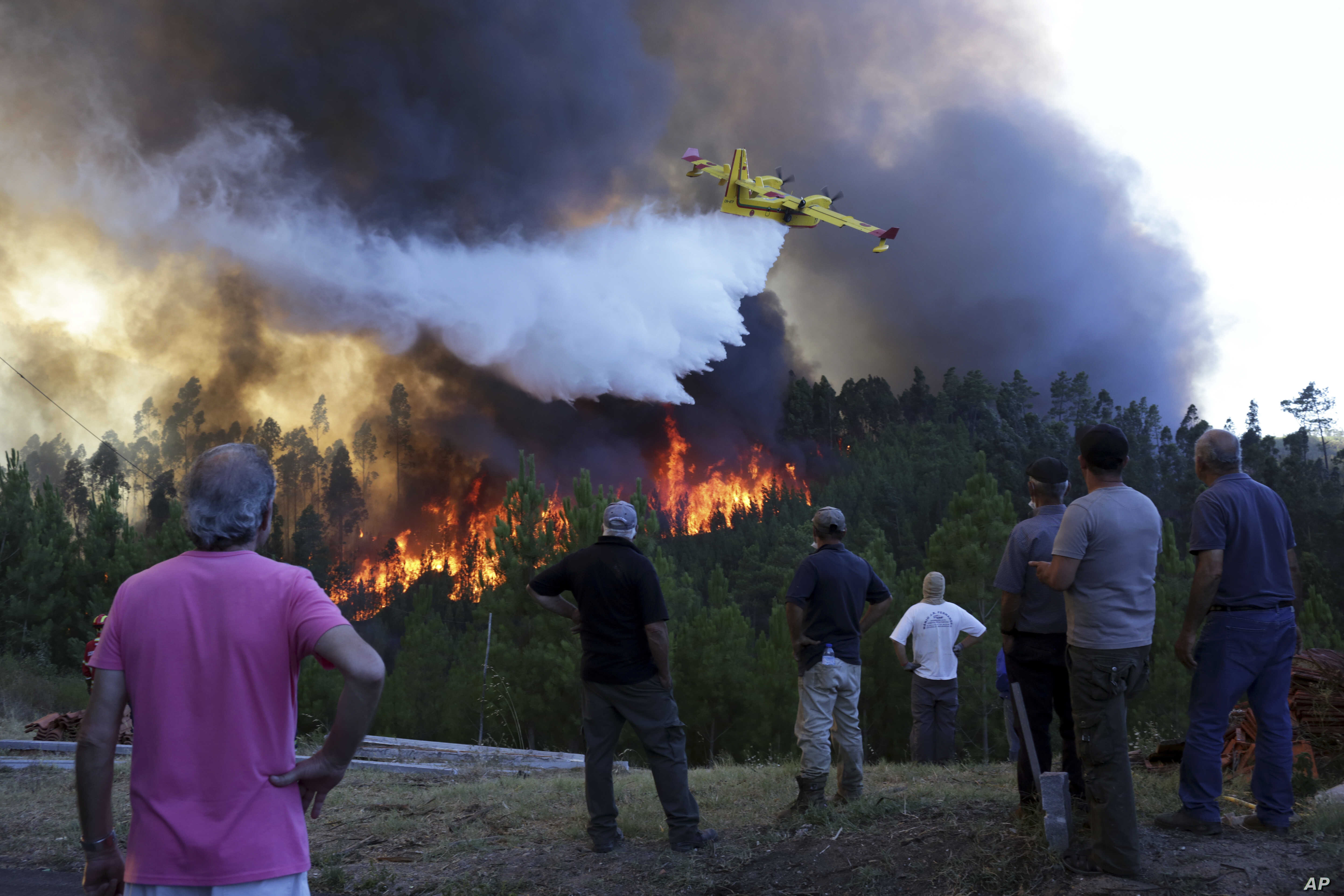 Villagers watch a firefighting plane drop water to stop a raging forest fire reaching their houses just a few dozen meters away in the village of Chao de Codes, near Macao, central Portugal.