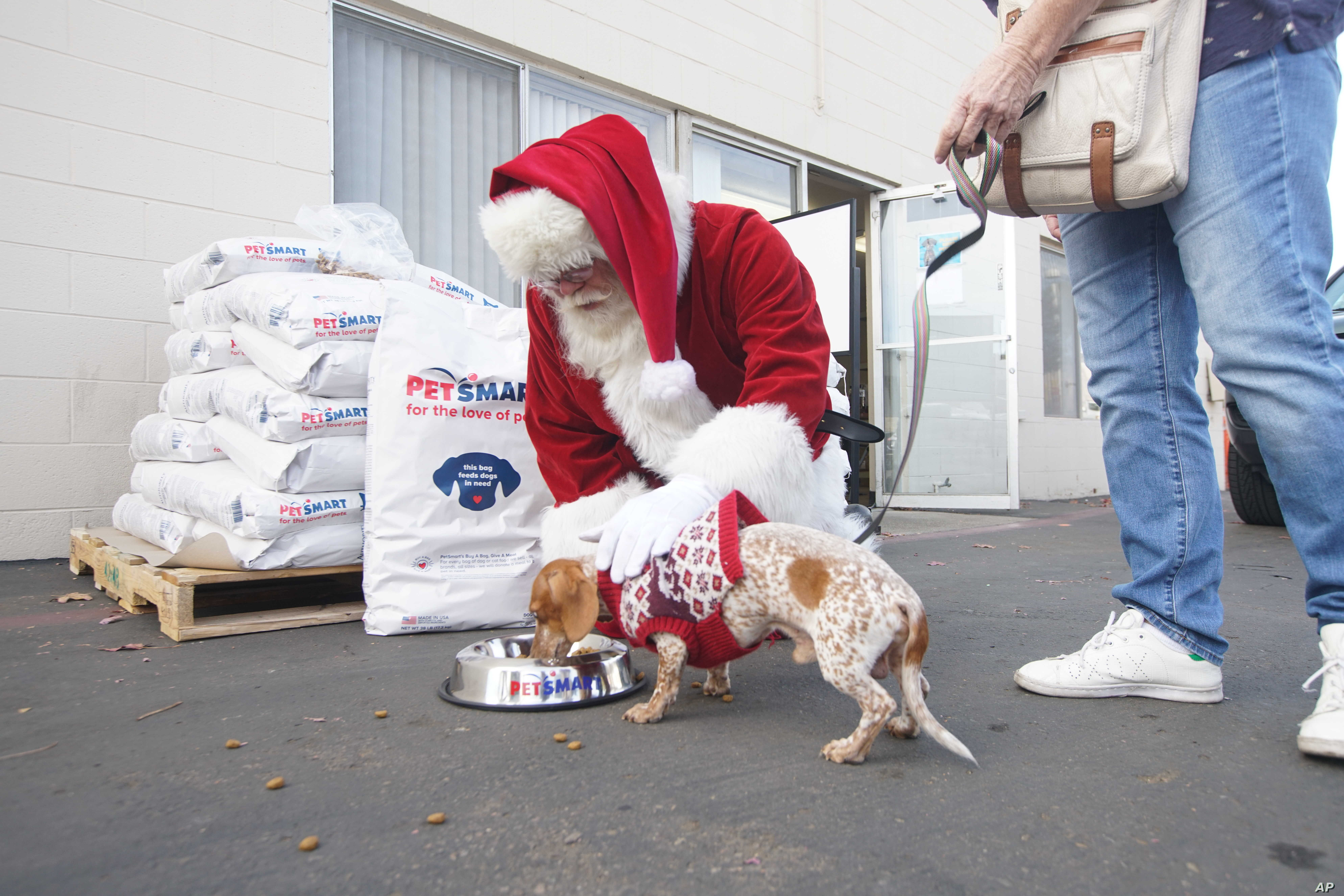 A PetSmart volunteer crew teams up with Santa Claus to load a truck with bags of free pet food for Rover's Retreat, a partner of San Diego Humane Society's PAWS program, on Tuesday, December 5, 2017 in San Diego.