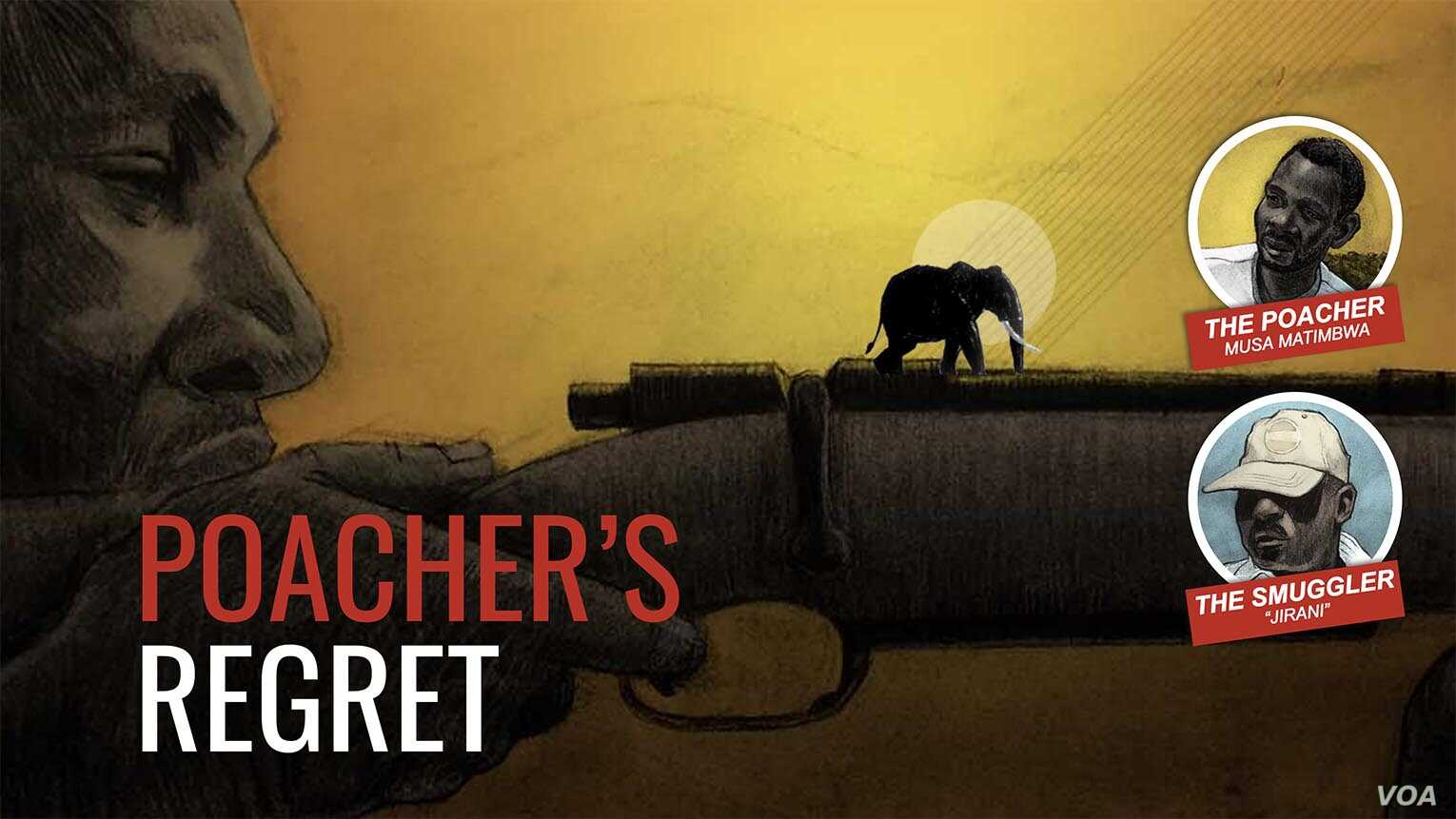 Poaching project: Poacher's regret poster image (alternative)