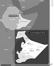 Ogaden Rebels say 626 Ethiopian Troops Killed in Clashes