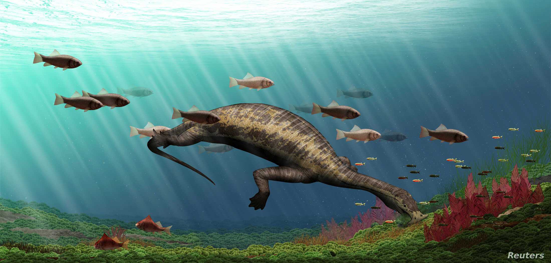 "Life restoration of Atopodentatus (the ""hammerhead"") is shown in this image released May 6, 2016. (Courtesy: Y. Chen/IVPP)"