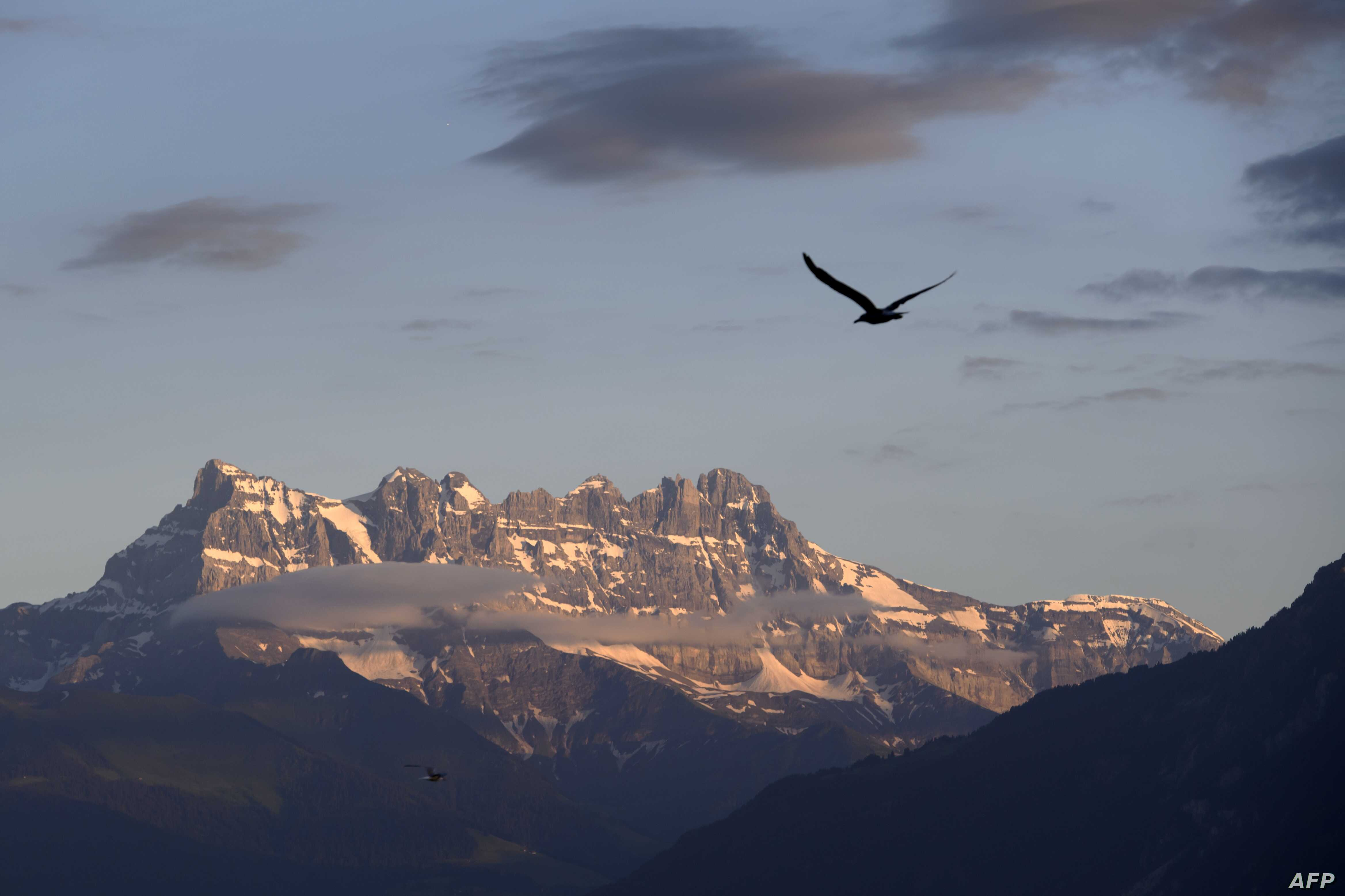 """A gull flies with the """"Dents du Midi"""" multi-summited mountain as background on July 3, 2016 in Montreux, Switzerland."""
