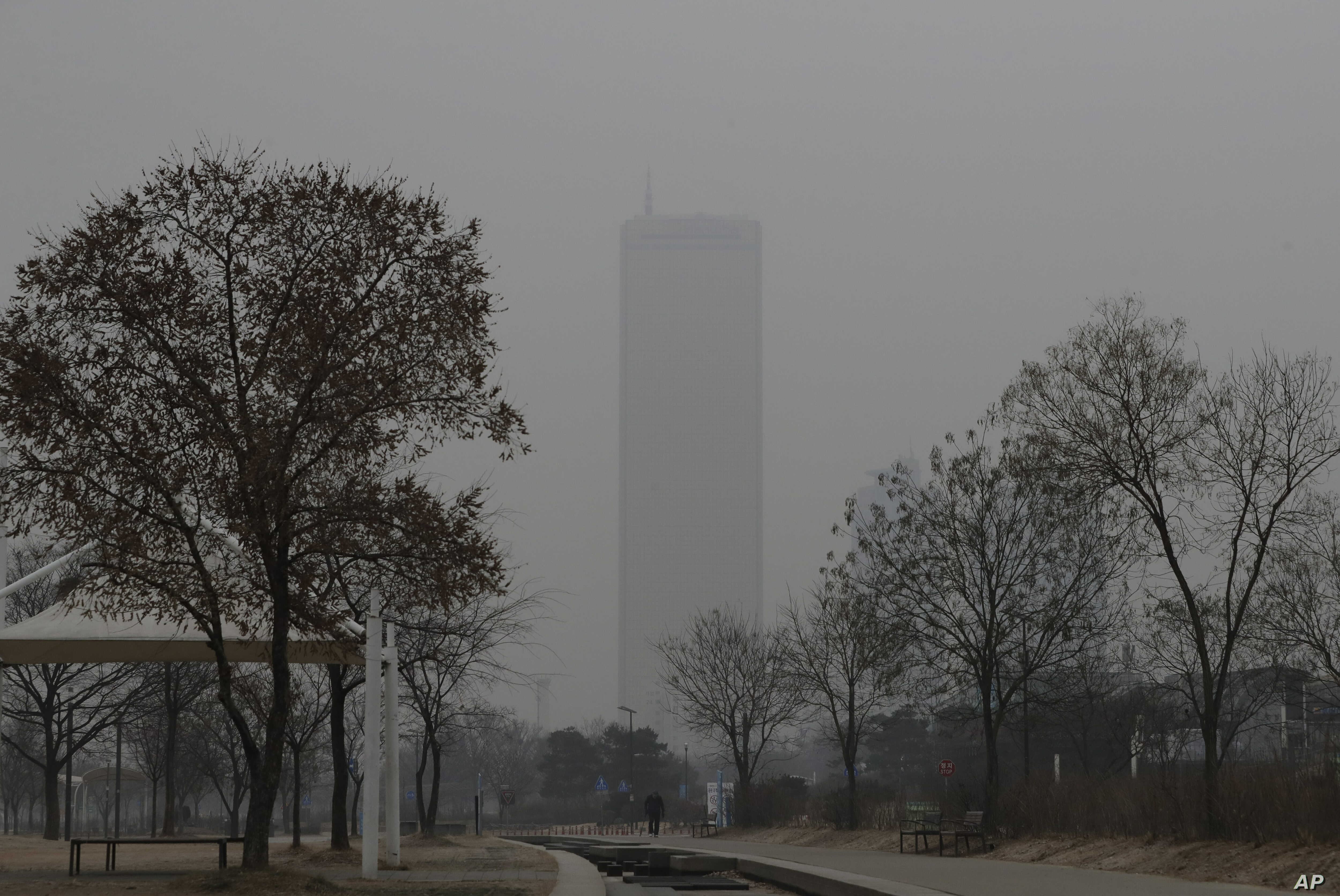 FILE - A man wears a face mask as he walks near the Han river at a park in a smog-covered Seoul, South Korea, Jan. 14, 2019. Unusually high levels of smog worsened by weather patterns are raising alarm across Asia.