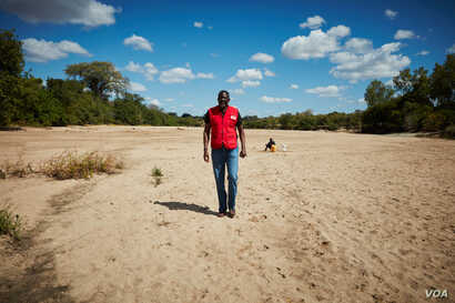 International Federation of Red Cross and Red Crescent Societies Secretary General Elhaji As Sy walks a sandy riverbed of Mudzi River in Zimbabwe as a drought grips the southern African region, May 15, 2016. Locals say that, at this time of year, the...