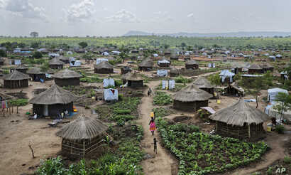 In this photo taken Friday, June 9, 2017, women and children return home with plastic containers of water, in a section of the sprawling complex of mud-brick houses and tents that makes up the Bidi Bidi refugee settlement in northern Uganda.